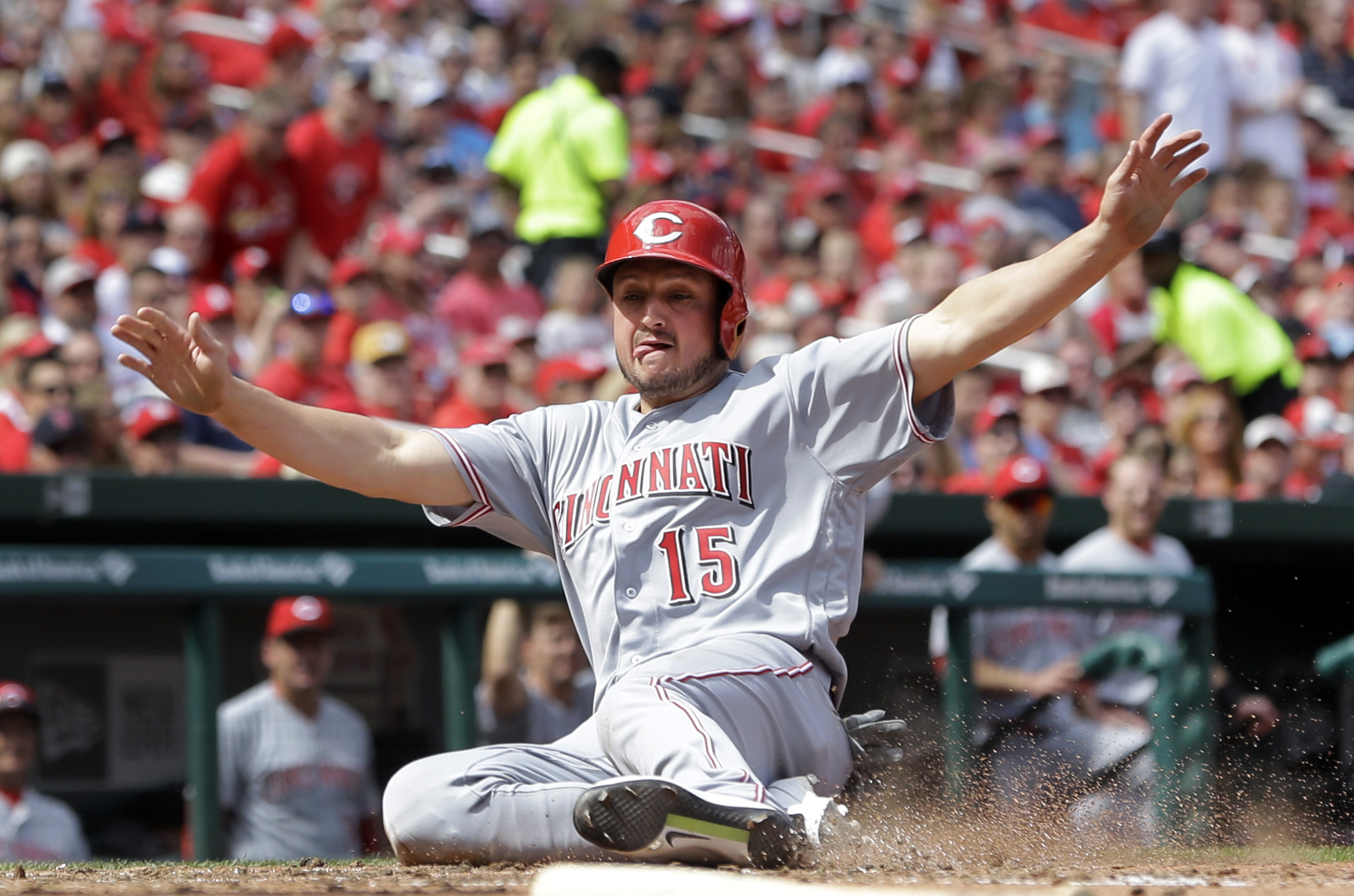 Cincinnati Reds' Jordan Pacheco scores on a double by Eugenio Suarez during the sixth inning of a baseball game against the St. Louis Cardinals Saturday, April 16, 2016, in St. Louis. (AP Photo/Jeff Roberson)