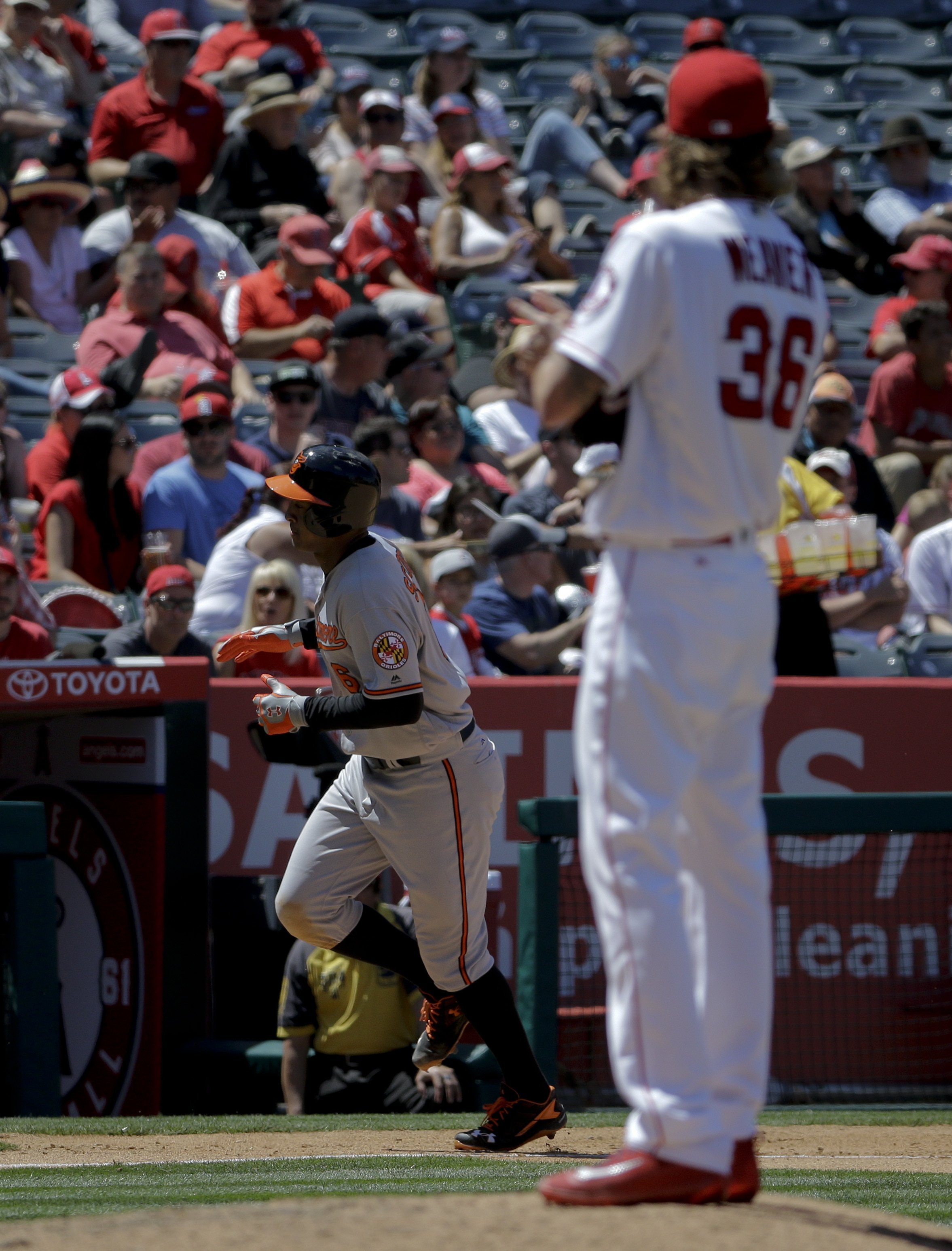 Baltimore Orioles' Jonathan Schoop celebrates as he rounds the bases after hitting a two-run home run off Los Angeles Angels starting pitcher Jered Weaver (36) during the seventh inning of a baseball game in Anaheim, Calif., Sunday, May 22, 2016. (AP Phot