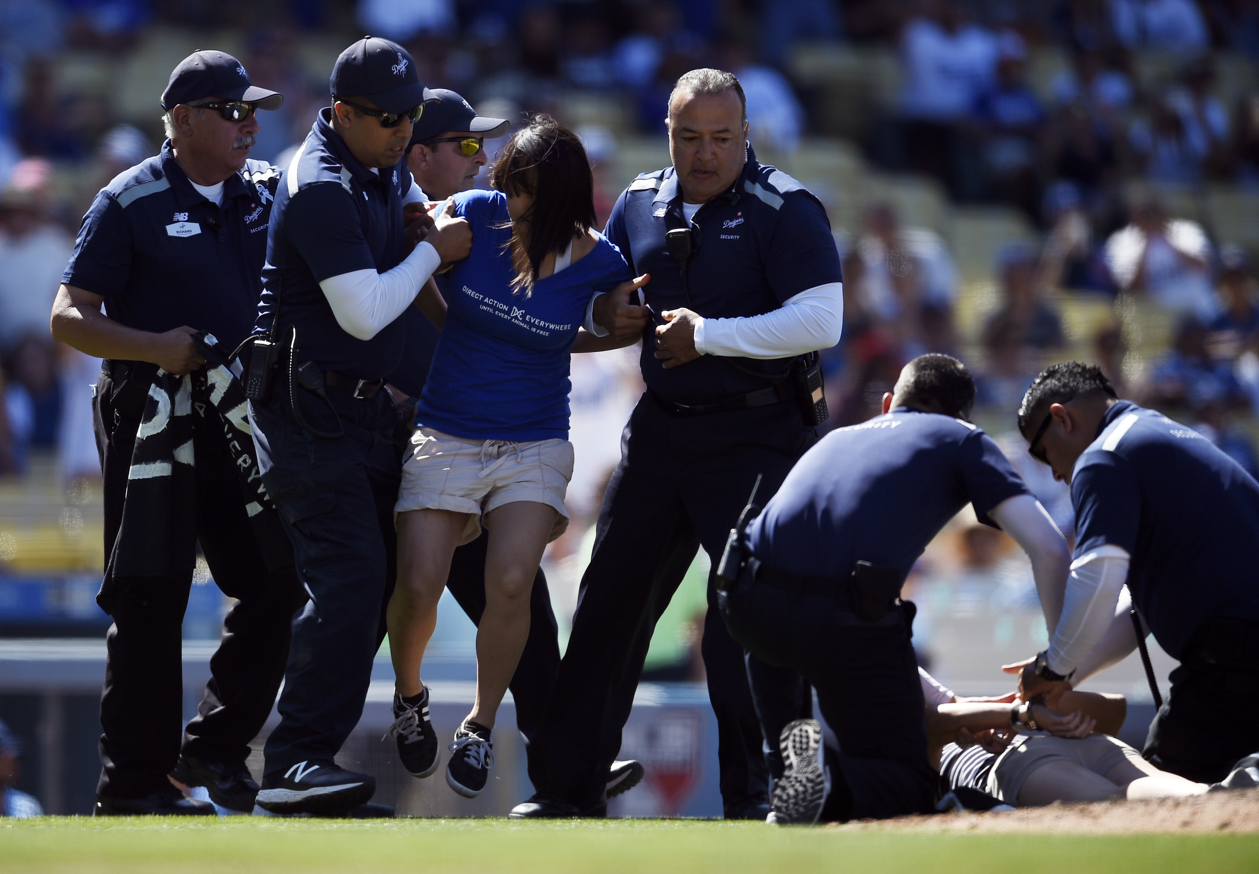Protesters are taken off the field by security personnel during the ninth inning of a baseball game between the Los Angeles Dodgers and the Colorado Rockies in Los Angeles, Sunday, July 3, 2016. (AP Photo/Kelvin Kuo)