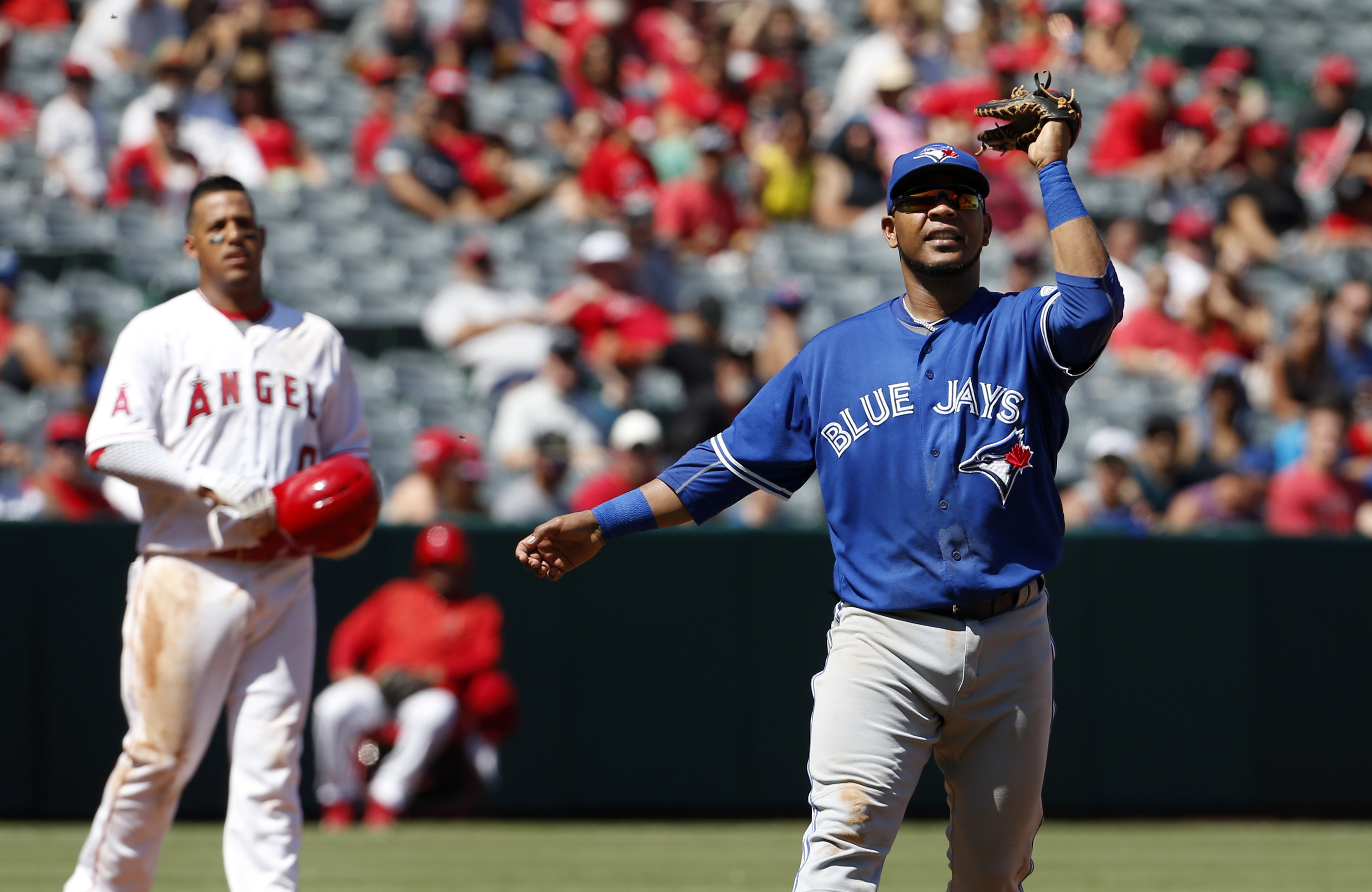 Toronto Blue Jays first baseman Edwin Encarnacion waves his glove at a swarm of bees in the third inning of a baseball game against the Los Angeles Angels in Anaheim, Calif., Sunday, Sept. 18, 2016. (AP Photo/Christine Cotter)