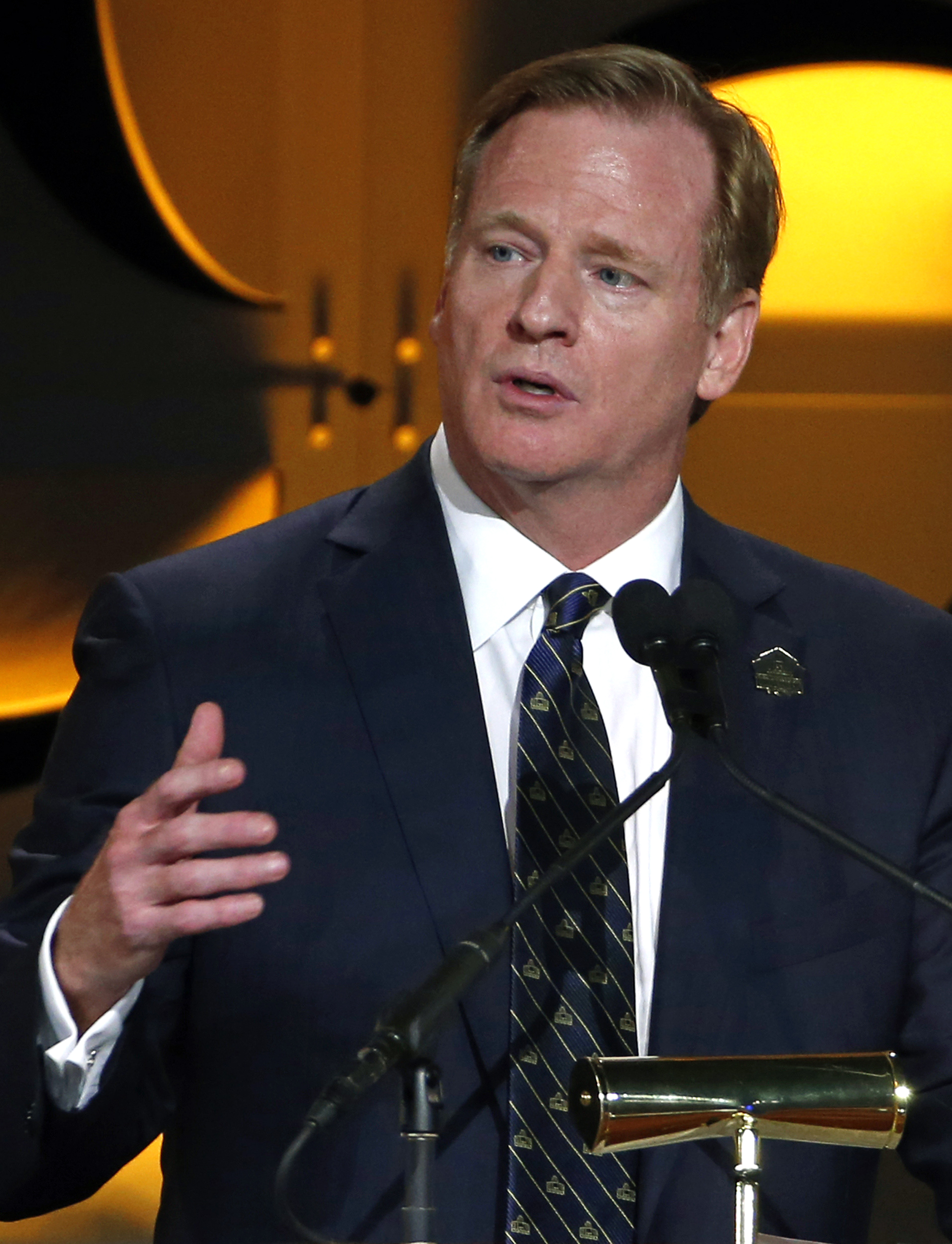 """FILE - In this Aug. 6, 2015, file photo, National Football League commissioner Roger Goodell addresses the Pro Football Hall of Fame Gold Jacket Ceremony in Canton, Ohio. Goodell says the existing stadiums in St. Louis, San Diego and Oakland are """"inadequa"""