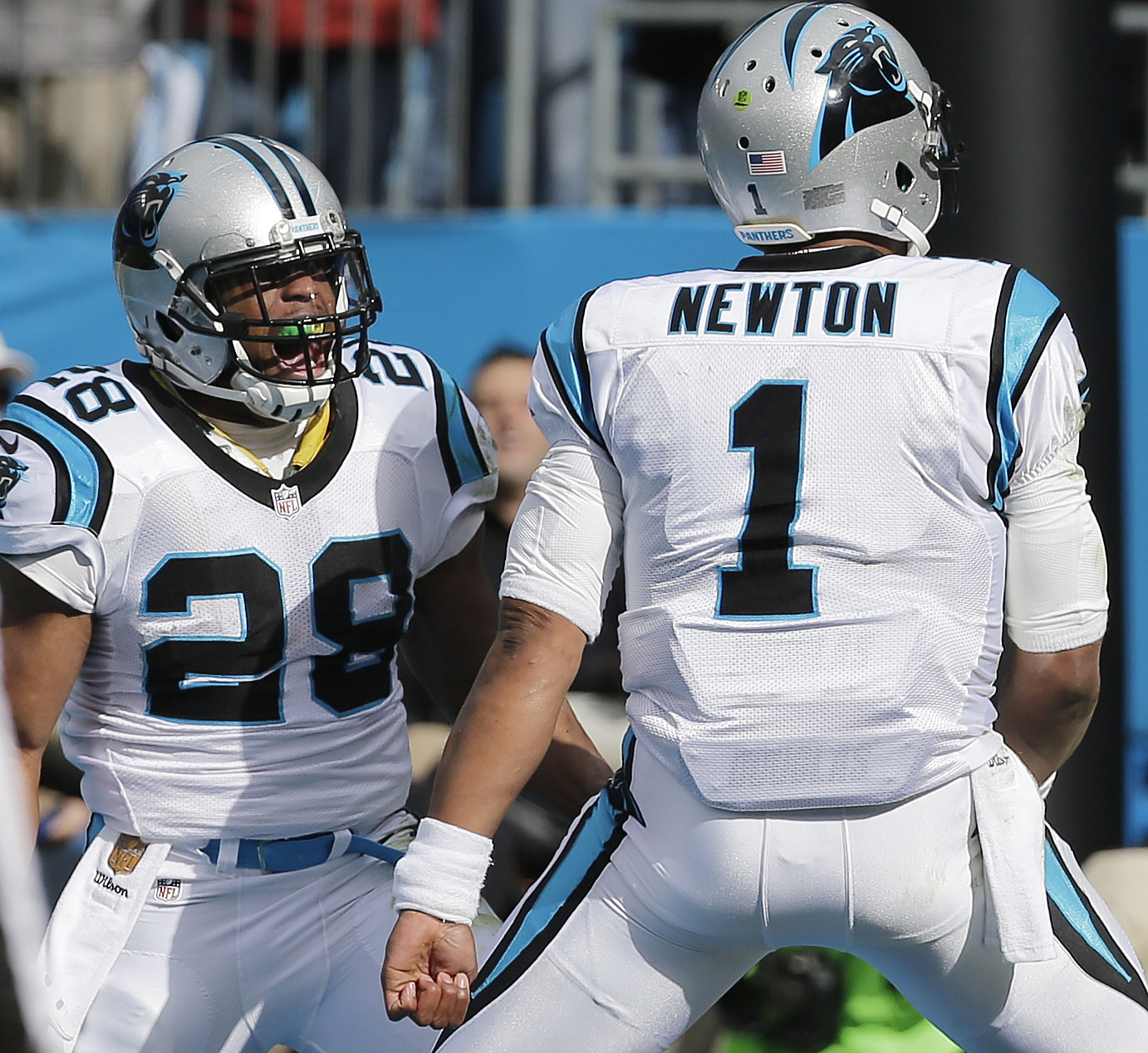 Carolina Panthers running back Jonathan Stewart (28) celebrates his touchdown with Carolina Panthers quarterback Cam Newton (1) against the Seattle Seahawks during the first half of an NFL divisional playoff football game, Sunday, Jan. 17, 2016, in Charlo