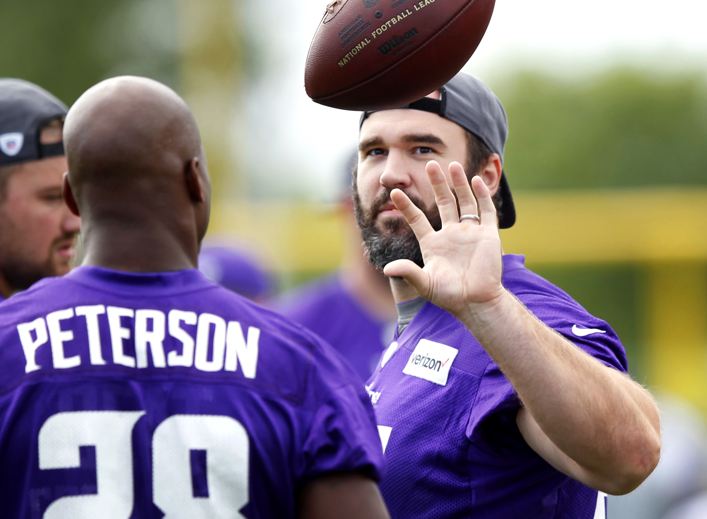 Minnesota Vikings center John Sullivan (65) catches the ball tossed by running back Adrian Peterson (28) during the first day of NFL football training camp at Mankato State University in Mankato, Minn. on Friday, July, 29, 2016.(AP Photo/Andy Clayton-King
