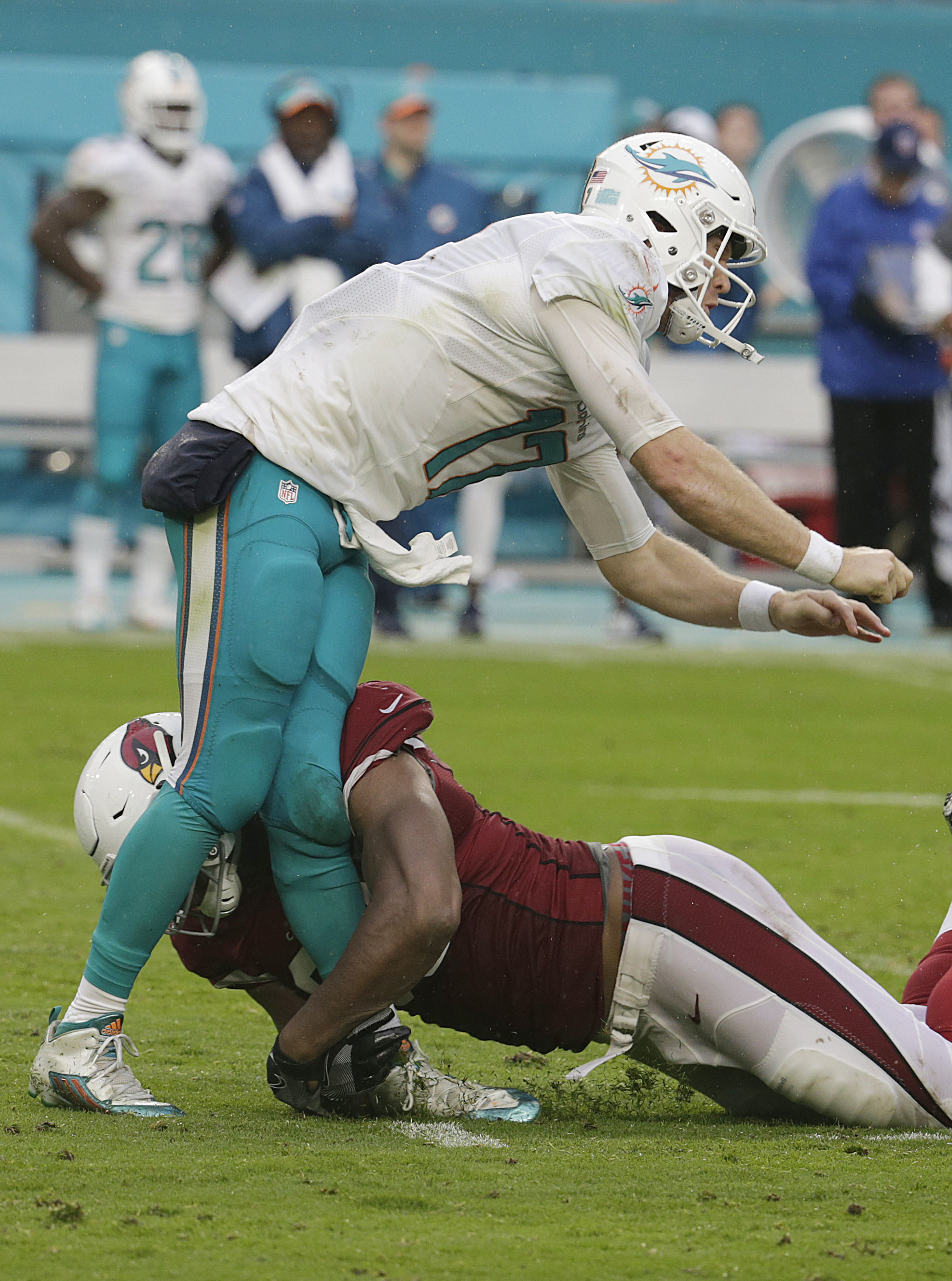 Arizona Cardinals defensive end Calais Campbell (93) tackles Miami Dolphins quarterback Ryan Tannehill (17), during the second half of an NFL football game, Sunday, Dec. 11, 2016, in Miami Gardens, Fla. Tannehill was injured on the play. (AP Photo/Lynne S