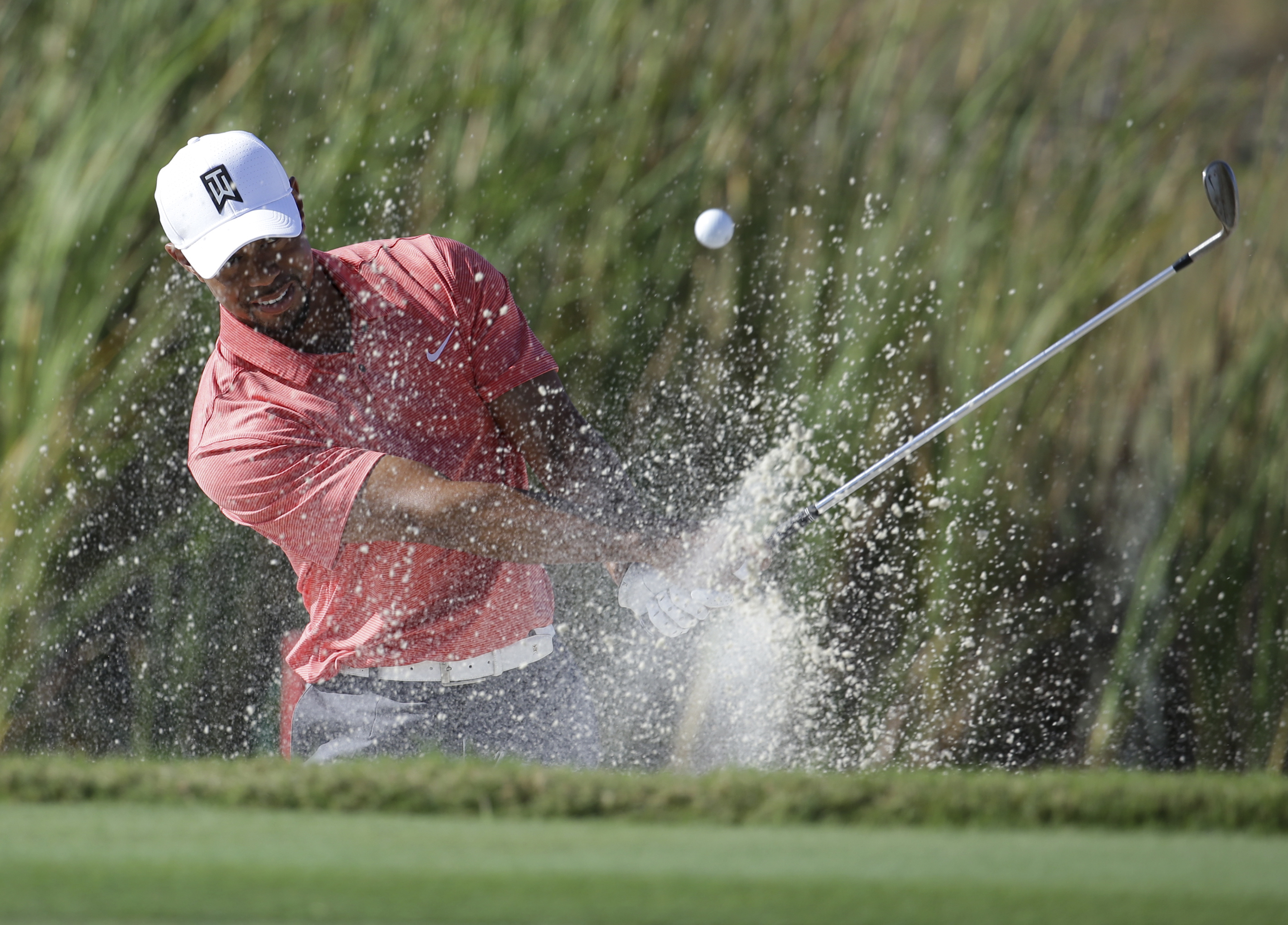 Tiger Woods hits from a bunker onto the sixth green during the Pro-Am at the Hero World Challenge golf tournament, Wednesday, Nov. 30, 2016, in Nassau, Bahamas. (AP Photo/Lynne Sladky)