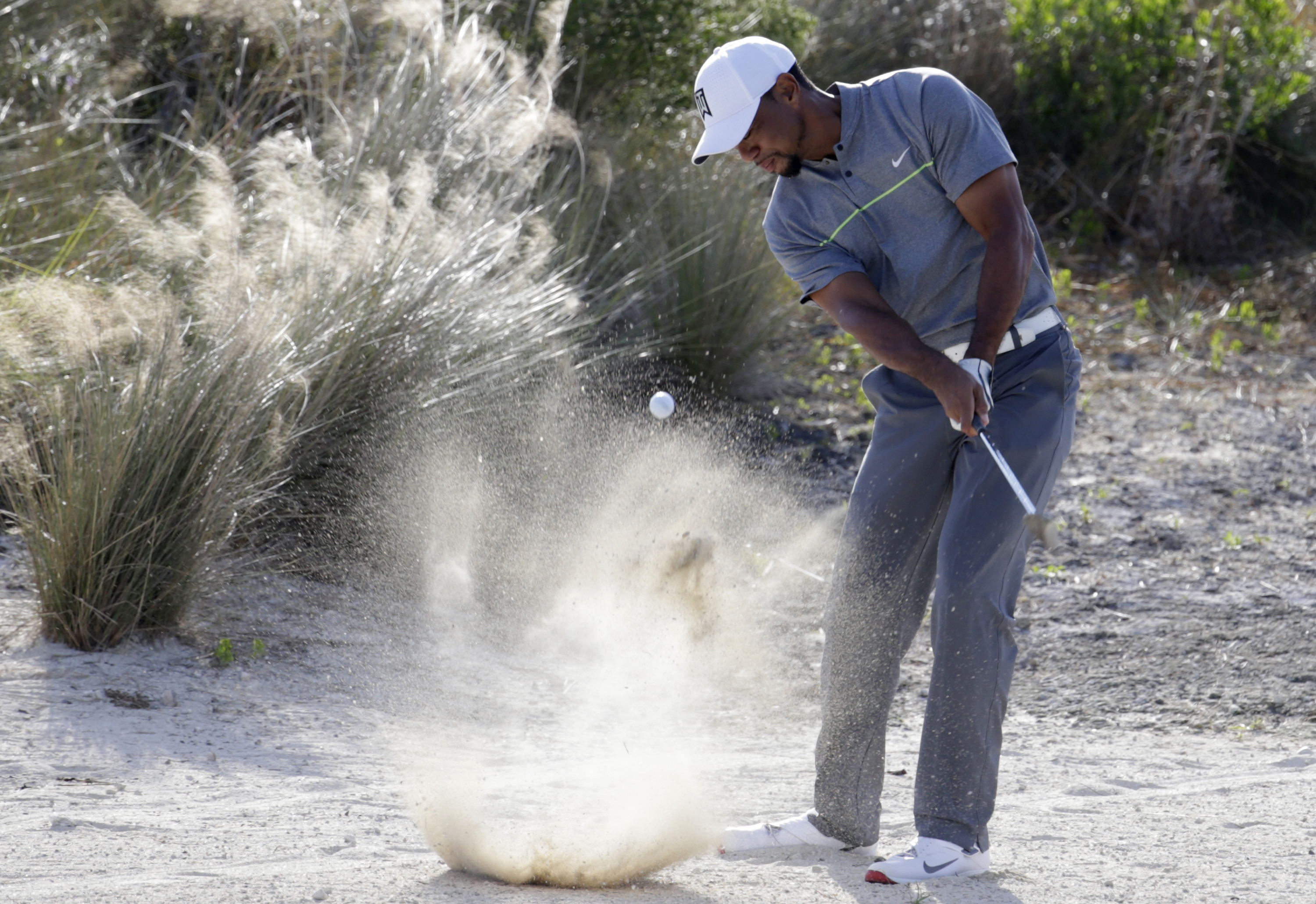 Tiger Woods hits from the sand on the 14th hole during the third round at the Hero World Challenge golf tournament, Saturday, Dec. 3, 2016, in Nassau, Bahamas. (AP Photo/Lynne Sladky)