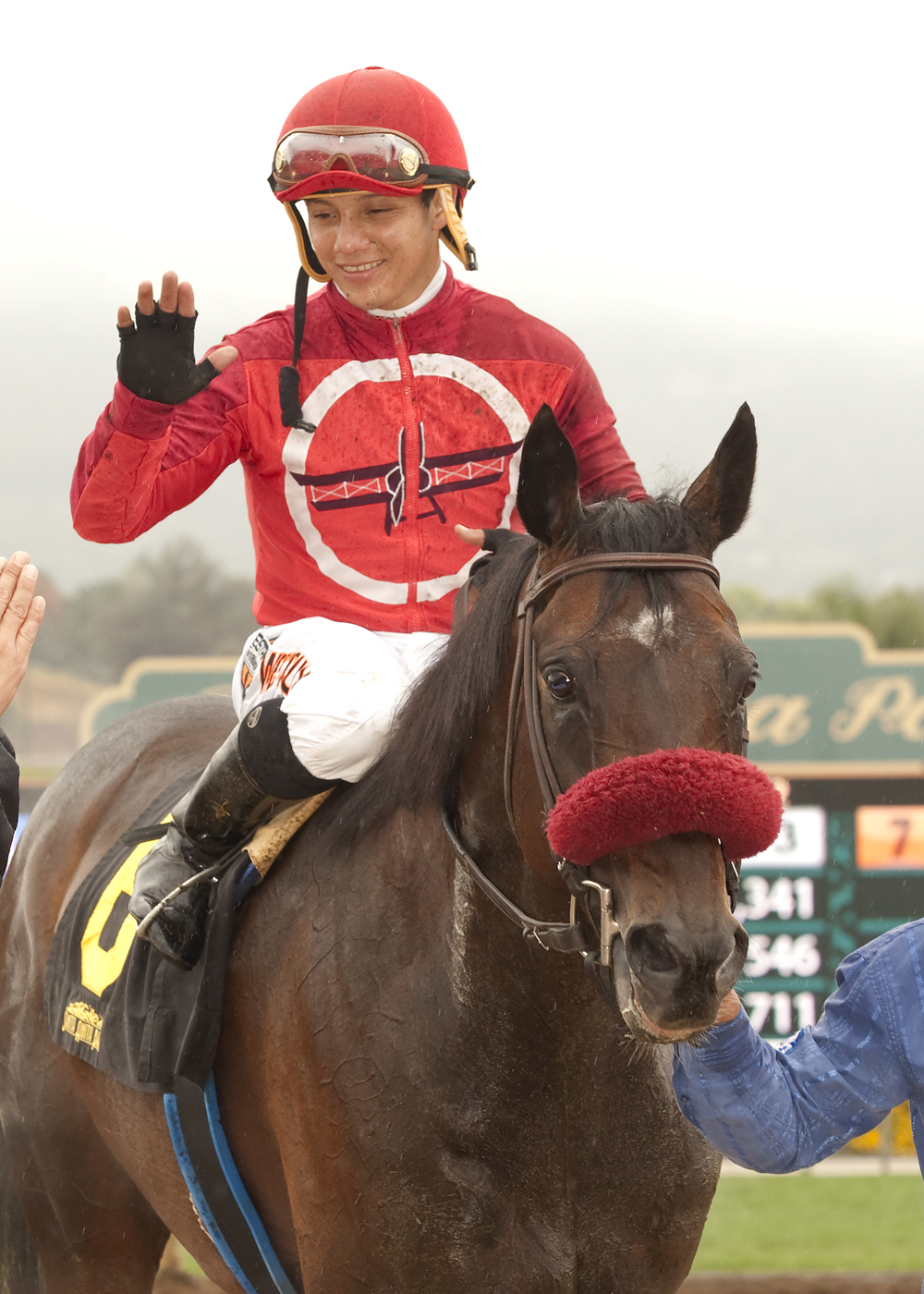 In this image provided by Benoit Photo, Si Sage and jockey Elvis Trujillo enter the Winner's Circle after their victory in the Grade III, $100,000 Last Tycoon Stakes horse race Saturday, April 25, 2015, at Santa Anita Park in Arcadia Calif. (Benoit Photo