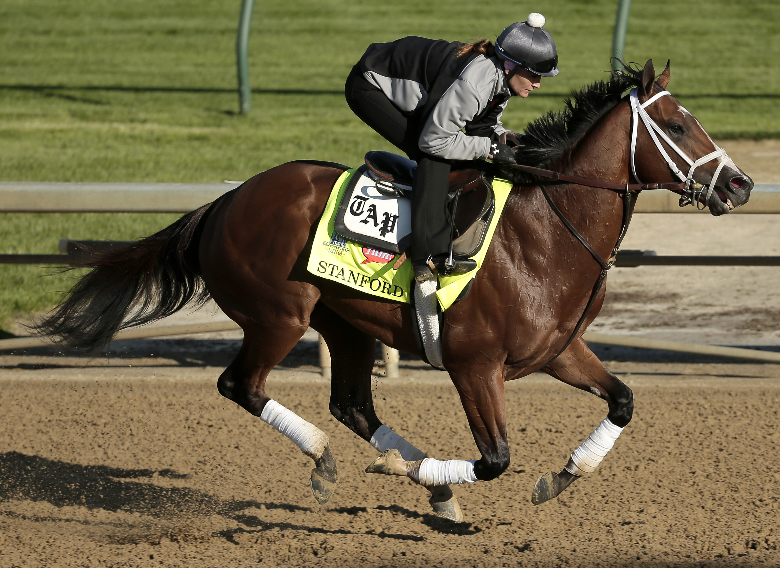 Kentucky Derby hopeful Stanford is ridden by exercise rider Isabelle Bourez during a morning workout at Churchill Downs Tuesday, April 28, 2015, in Louisville, Ky. (AP Photo/Charlie Riedel)