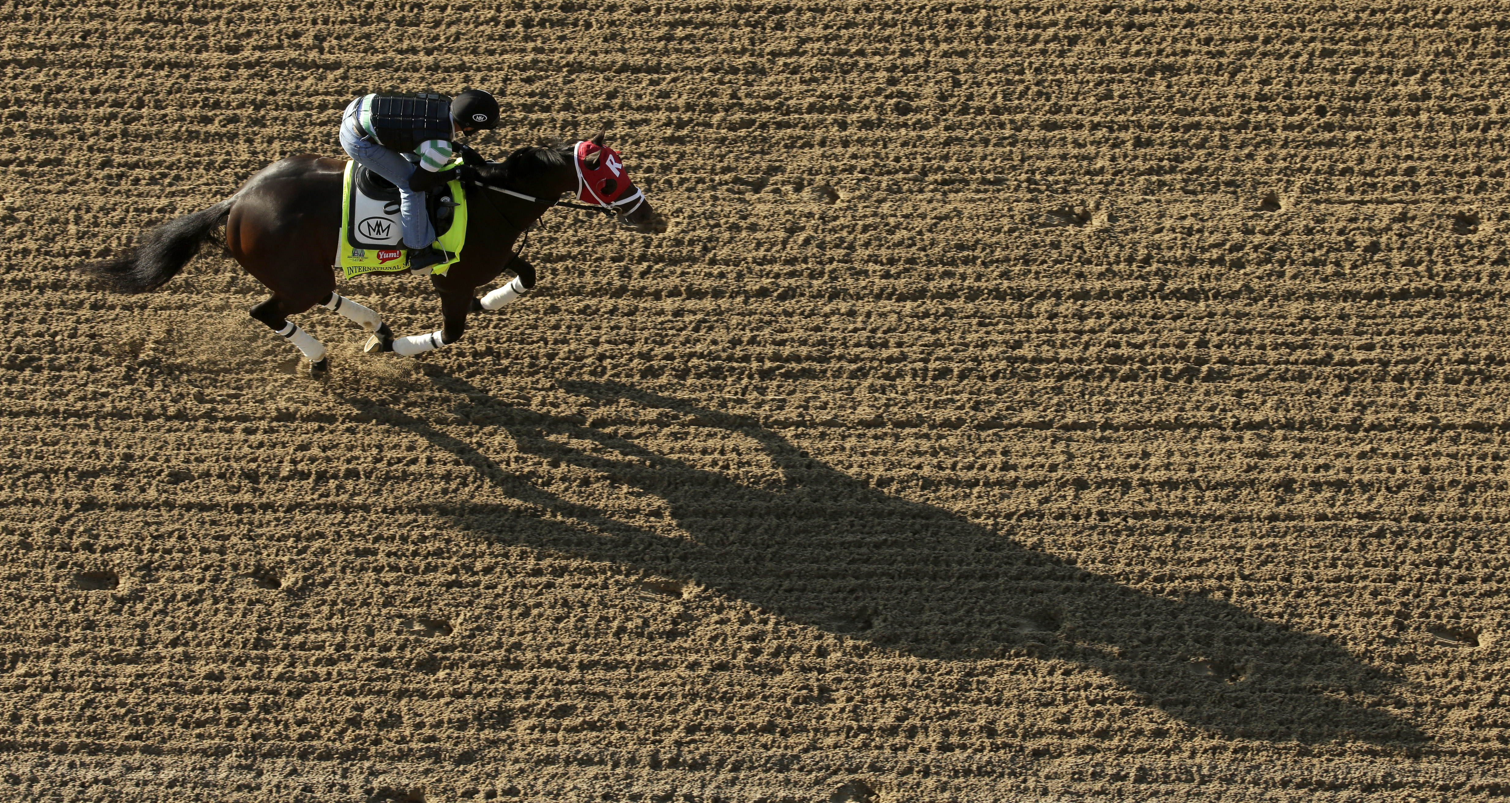 Exercise rider Joel Barrientos rides Kentucky Derby hopeful International Star during a workout at Churchill Downs Wednesday, April 29, 2015, in Louisville, Ky. (AP Photo/Charlie Riedel)