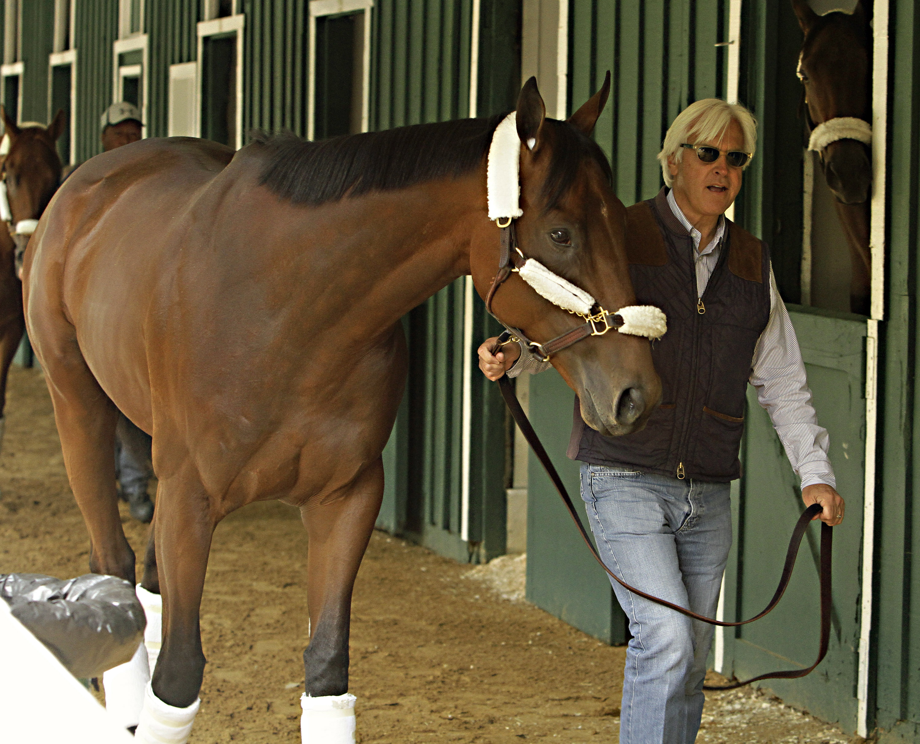 Kentucky Derby winner American Pharoah is held by trainer Bob Baffert at the stakes barn at Pimlico Race Course in Baltimore, Wednesday, May 13, 2015. The Preakness Stakes horse race is Saturday, May 16.(AP Photo/Garry Jones)