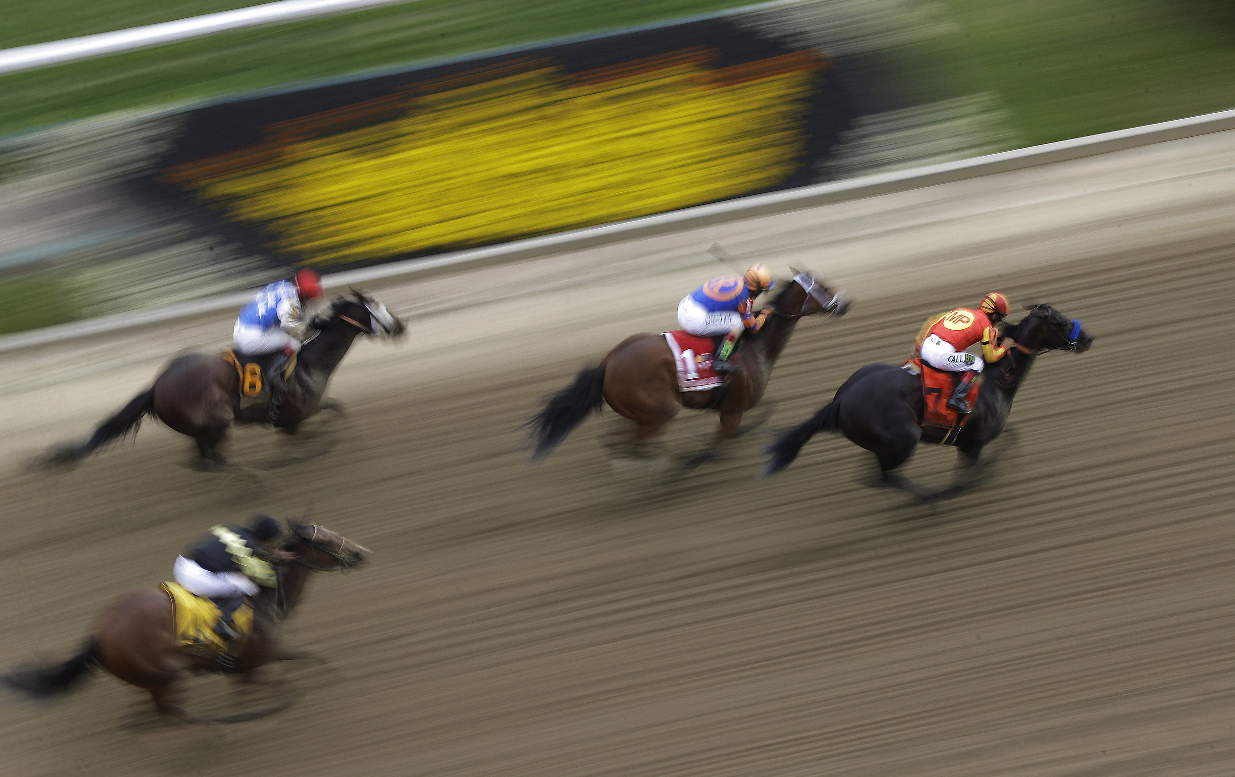Horses run during the Gallorette Handicap ahead of the 140th Preakness Stakes horse race at Pimlico Race Course, Saturday, May 16, 2015, in Baltimore. (AP Photo/Patrick Semansky)