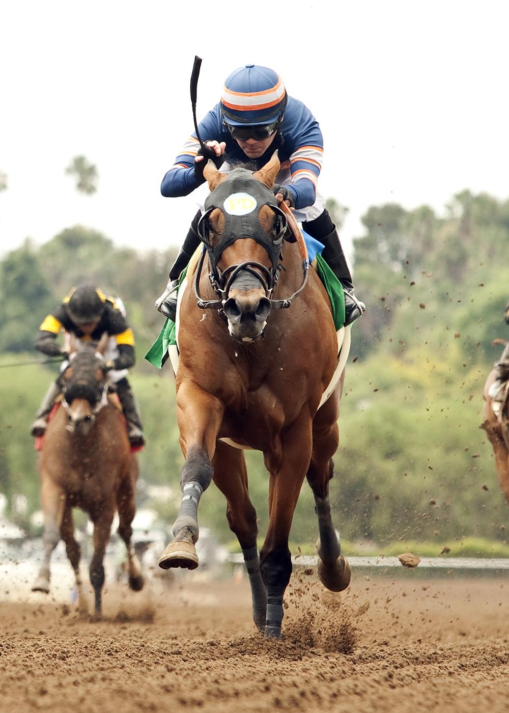 In a photo provided by Benoit Photo, Sunday Rules and jockey Tyler Baze win the $150,000 Spring Fever Stakes horse race, Saturday, May 23, 2015 ,at Santa Anita in Arcadia, Calif. (Benoit Photo via AP)