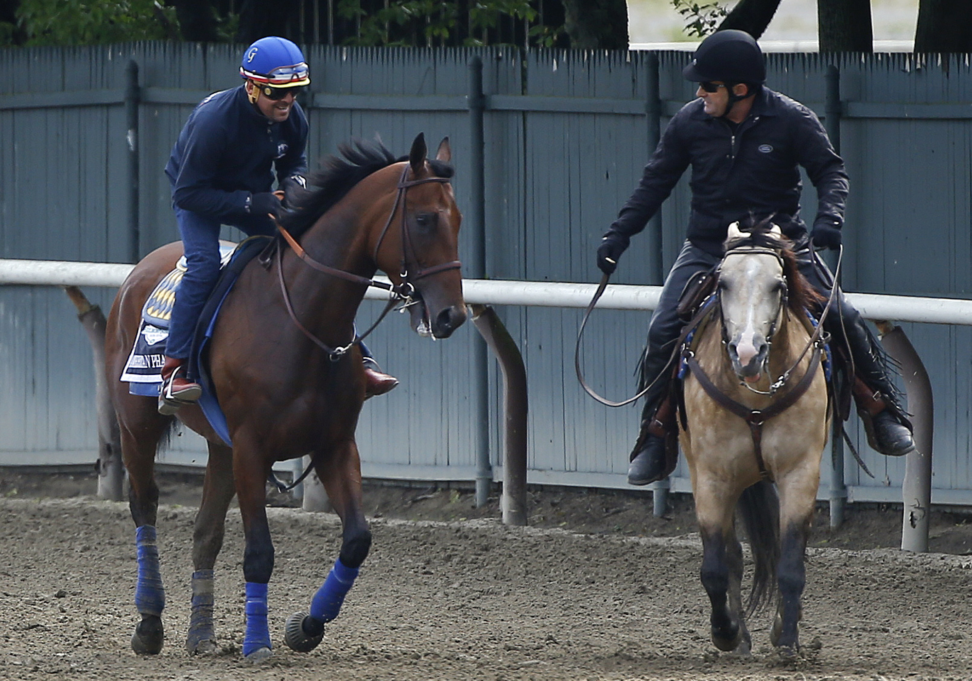 Kentucky Derby and Preakness Stakes winner American Pharoah, left, with exercise rider Jorge Alvarez up, is met by assistant trainer Jimmy Barnes on a pony, after jogging around the track at Belmont Park, Wednesday, June 3, 2015, in Elmont, N.Y. American