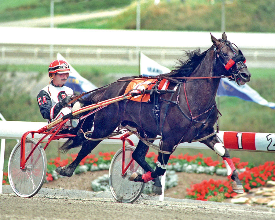 In this photo provided by the U.S. Trotting Association, Cambest driven by Dan Altmeyer, races at the The Meadows in Washington, Pa. Cambest died Wednesday, June 10, 2015, at Walnut Hall Ltd., the Lexington farm where he spent more than 20 years in leisur