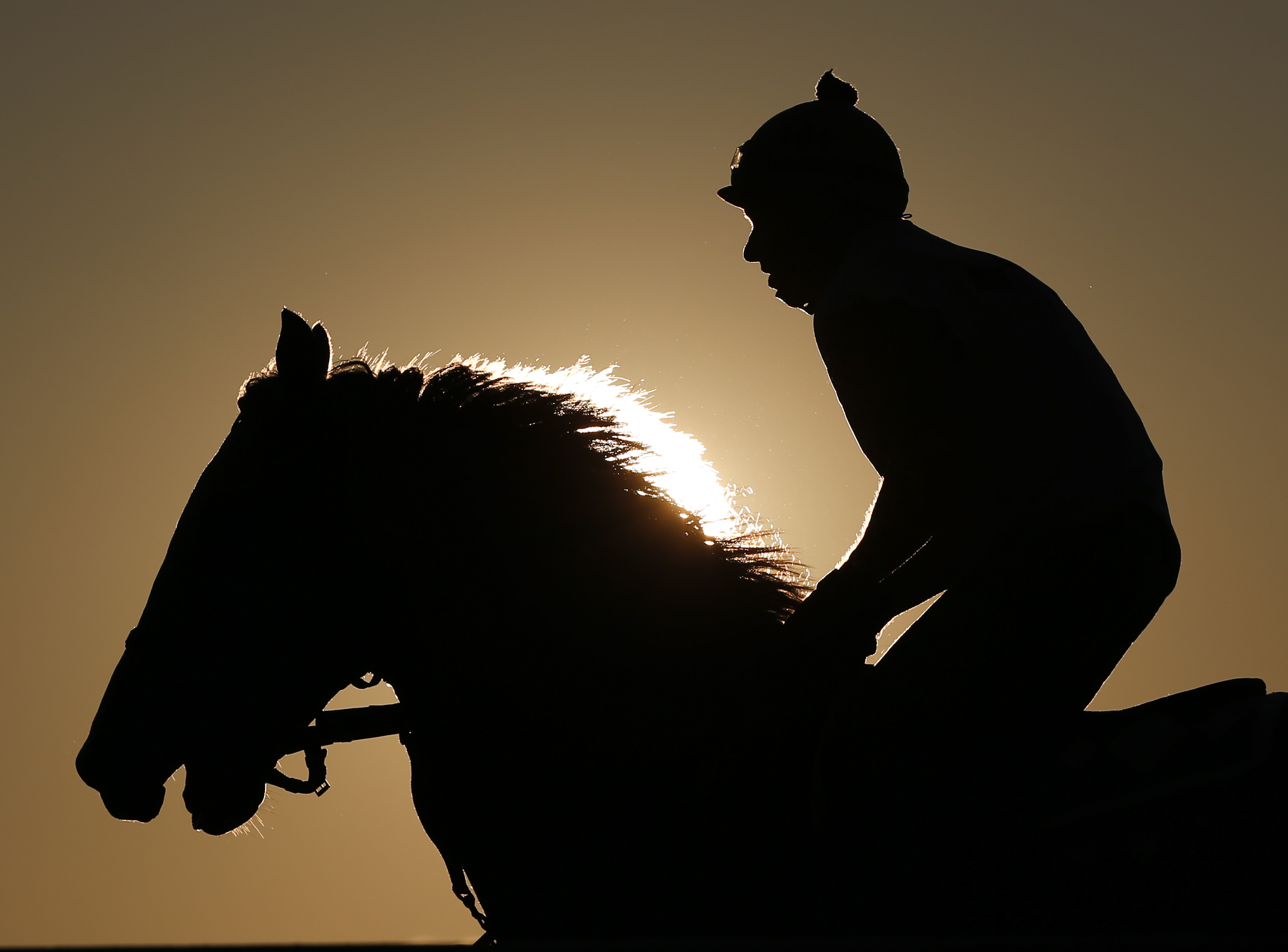 An exercise rider takes a horse for a morning workout at Saratoga Race Course on Thursday, July 23, 2015, in Saratoga Springs, N.Y. Saratoga kicks off its 147th summer of thoroughbred racing on Friday.  (AP Photo/Mike Groll)