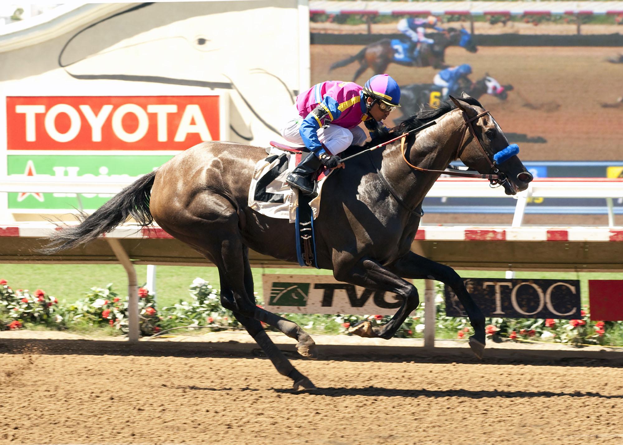 George Krikorian's Big Book and jockey Rafael Bejarano win the $200,000 Fleet Treat Stakes Saturday, July 25, 2015 at Del Mar Race Track in Del Mar, Calif. (Benoit Photo via AP)