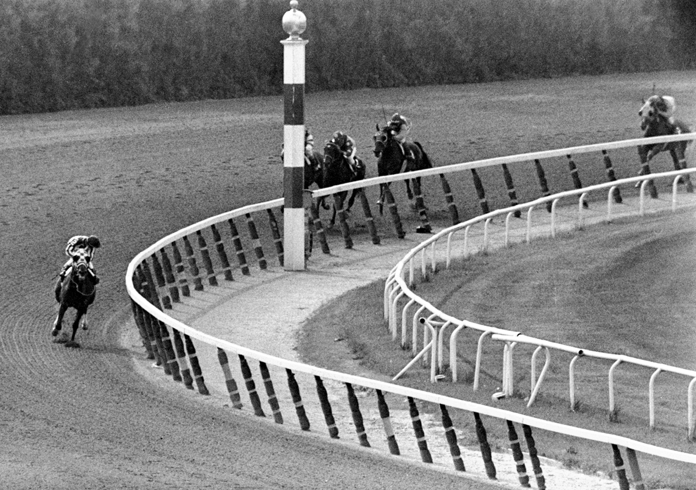 FILE - In this June 9, 1973, file photo, jockey Ron Turcotte, left, aboard Secretariat, turns for a look at the field behind, as they make the final turn on their way to winning the 1973 Triple Crown in the Belmont Stakes horse race at Belmont Park in Elm