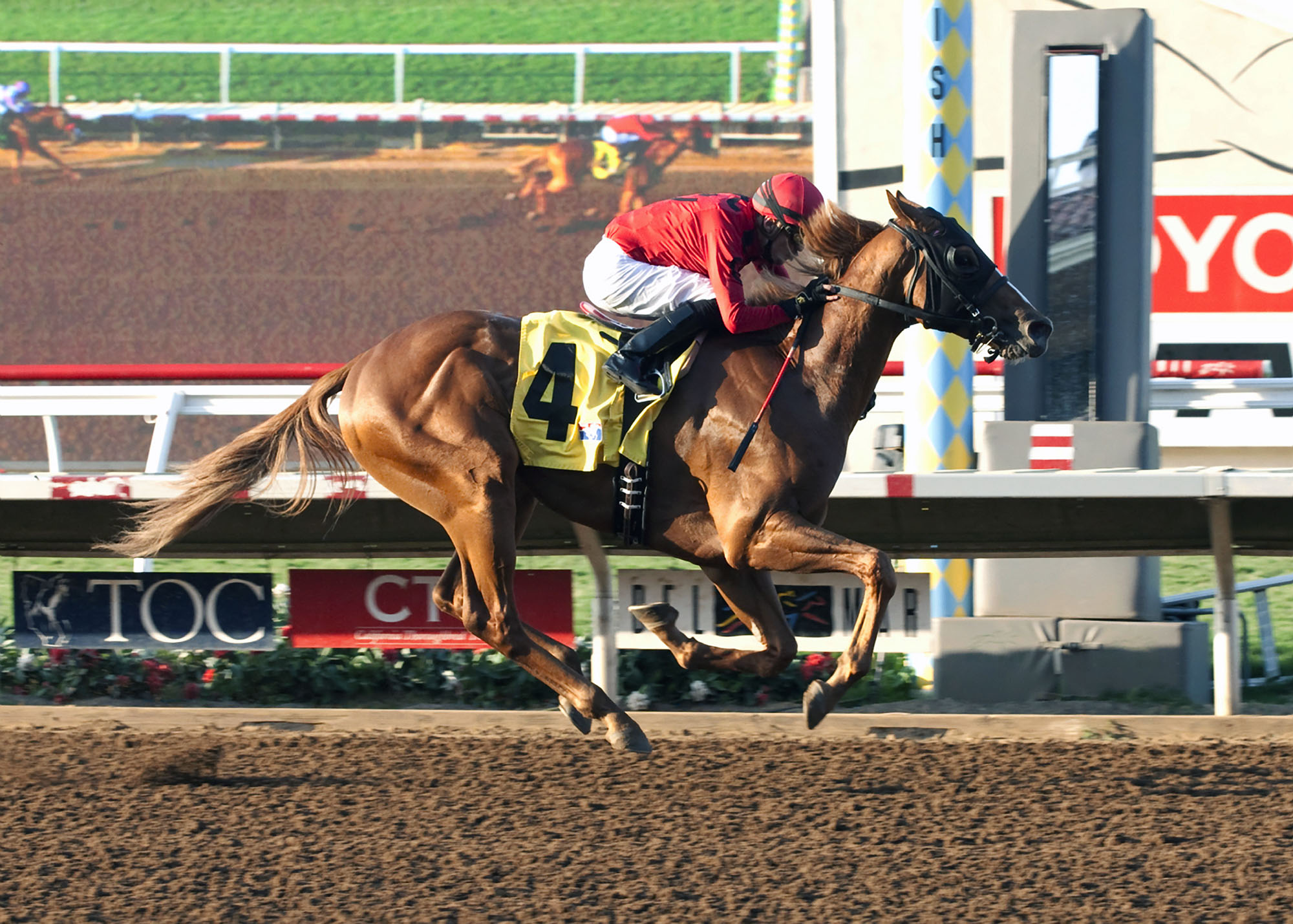 Betty or Robert G. Irvin's Smokey Image and jockey Juan Hernandez win the $150,000 I'm Smokin Stakes, Friday, Sept. 4, 2015 at the Del Mar Thoroughbred Club, in Del Mar, Calif. (Benoit Photo via AP) NO SALES