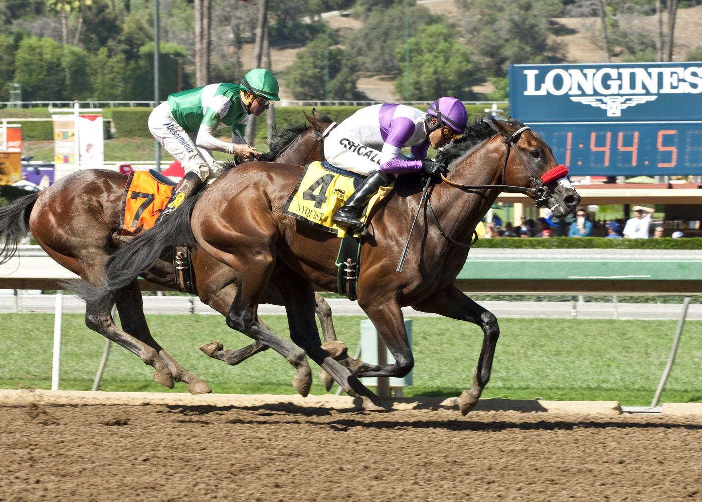 In a photo provided by Benoit Photo, Nyquist and jockey Mario Gutierrez, right, hold off Swipe. with Kent Desormeaux, to win the Grade I, $300,000 FrontRunner Stakes horse race, Saturday, Sept. 26, 2015, at Santa Anita in Arcadia, Calif. (Benoit Photo via