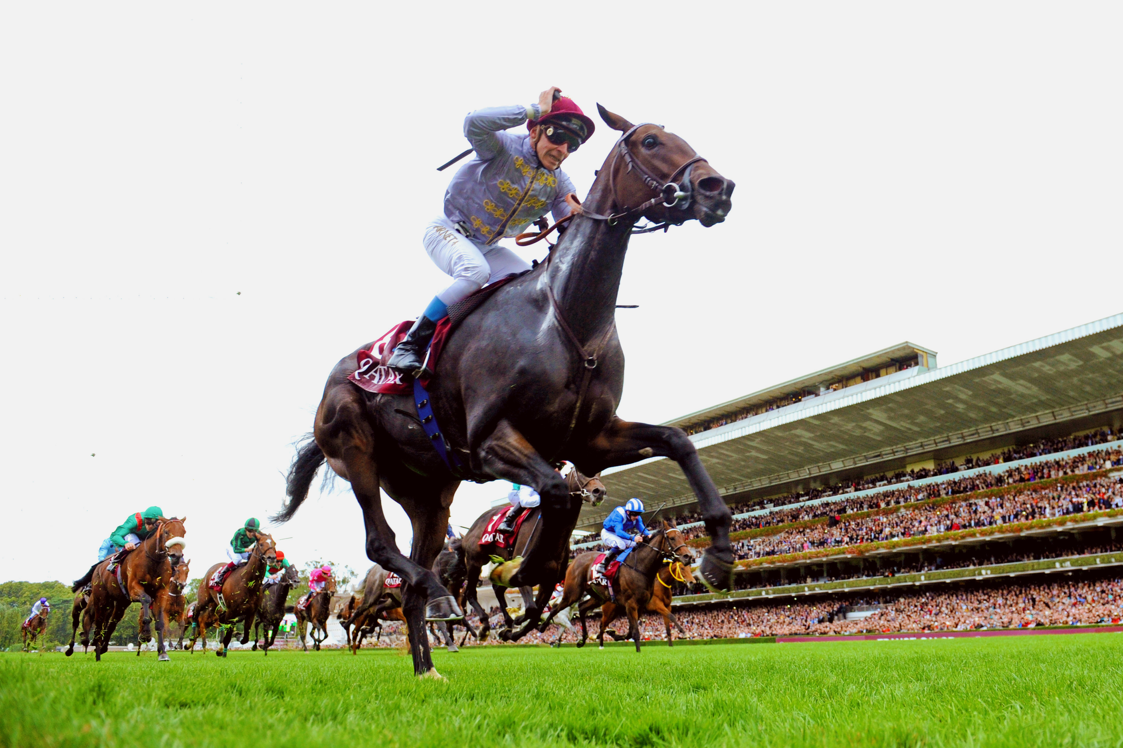FILE - In this Oct. 5, 2014 file photo, Thierry Jarnet riding Treve crosses the finish line to win the Qatar Prix de l'Arc de Triomphe horse race at the Longchamp race track, outside Paris. Already a superstar in racing circles, Treve is gaining new fans
