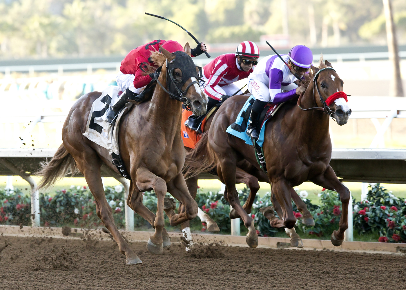 Irvin Racing Stable's Smokey Image and jockey Juan Hernandez, left, collar Found Money and Corey Nakatani, right, to win the $200,000 Golden State Juvenile horse race Friday, Oct. 30, 2015, at the Del Mar Thoroughbred Club in Del Mar, Calif. (Benoit Photo