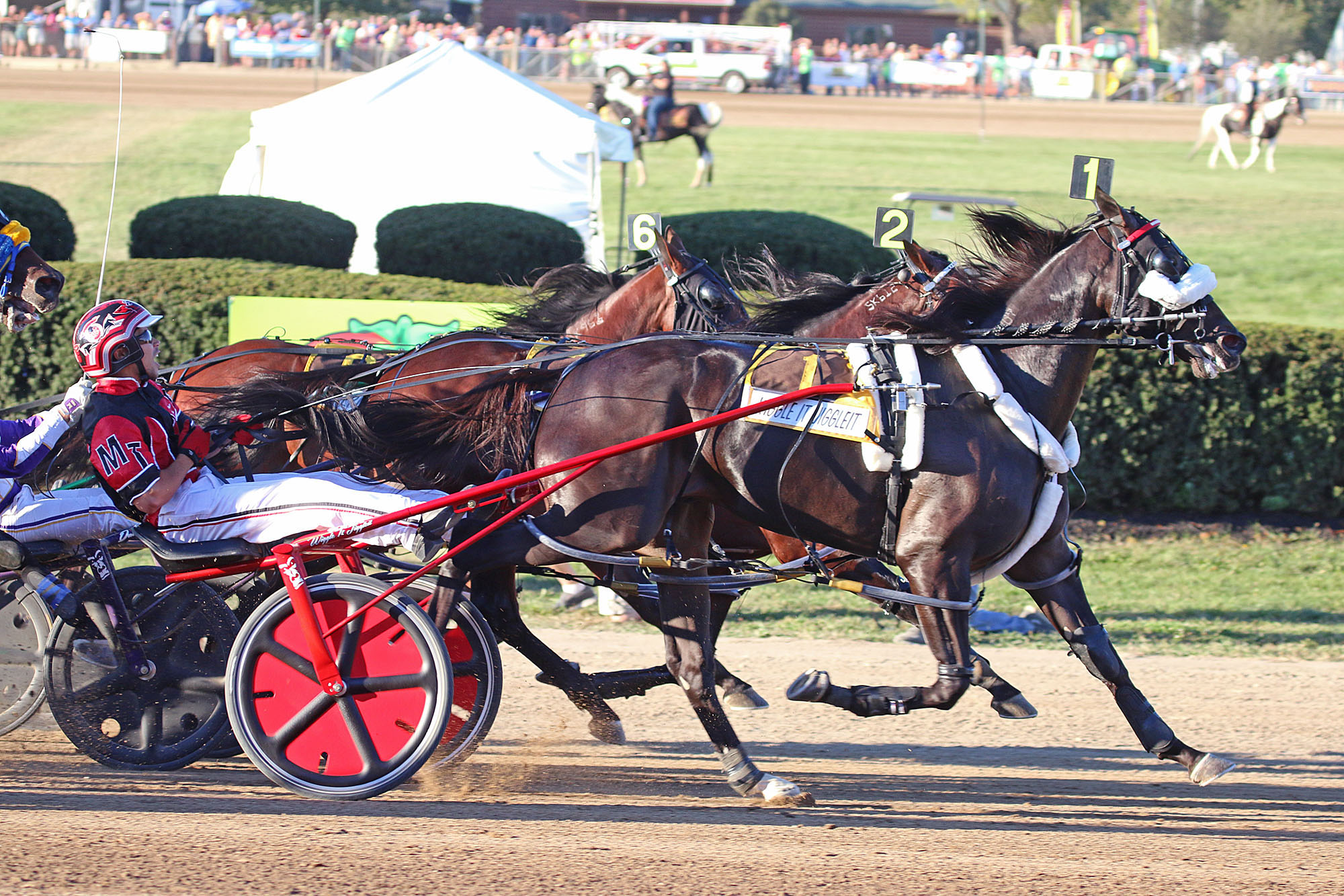 FILE - In this Sept. 24, 2015, file photo, Montrel Teague drives Wiggle It Jiggleit, foreground, across the finish line to win the Little Brown Jug harness race at the Delaware County Fairgrounds in Delaware, Ohio. Wiggle It Jiggleit is harness racing's H