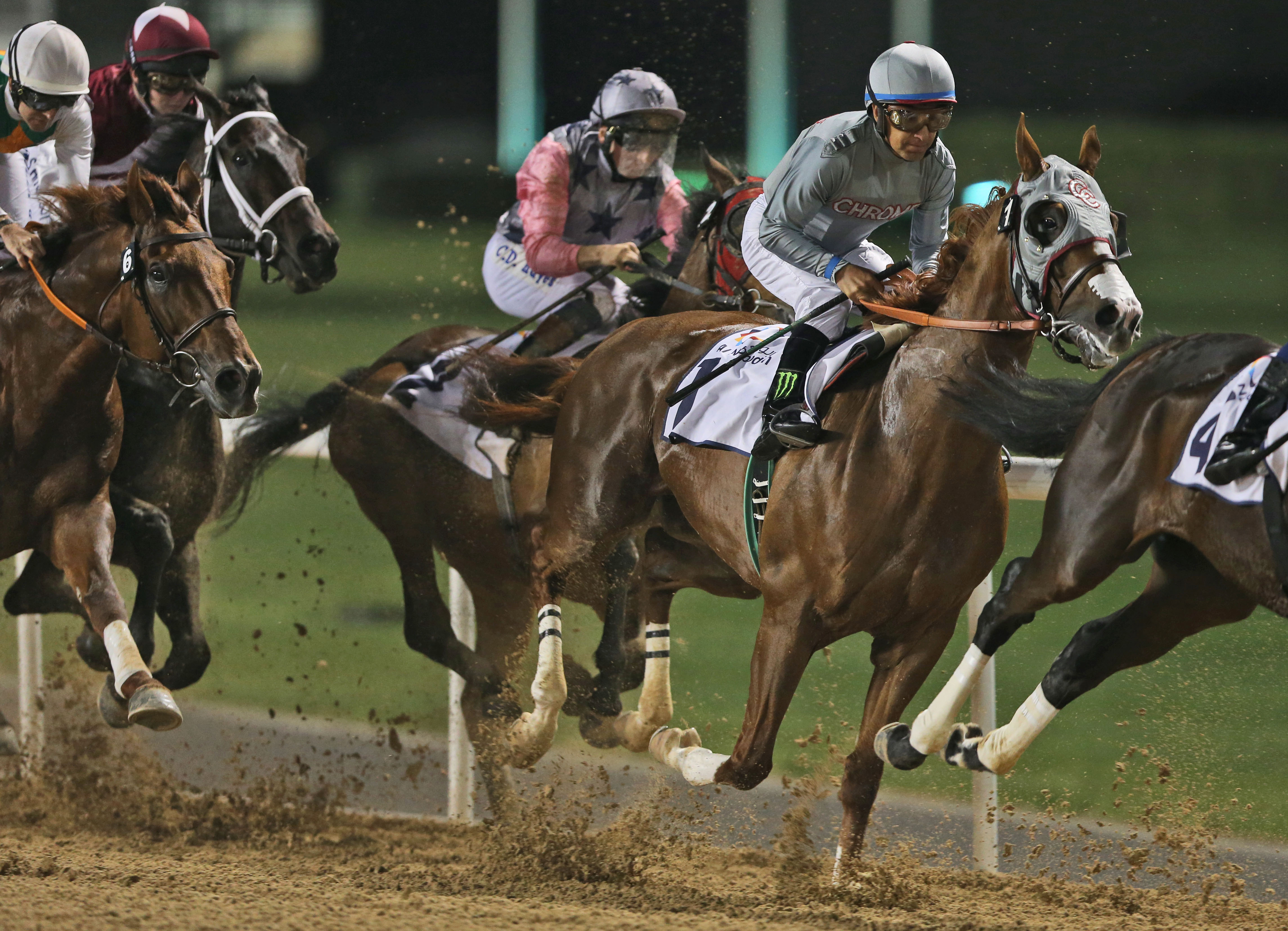 California Chrome of the U.S., ridden by Victor Espinoza, races ahead of El Tren of Ireland during a U.S.$ 150,000 price money race at the Meydan Racecourse in Dubai, United Arab Emirates, Thursday, Feb. 25, 2016. (AP Photo/Kamran Jebreili)