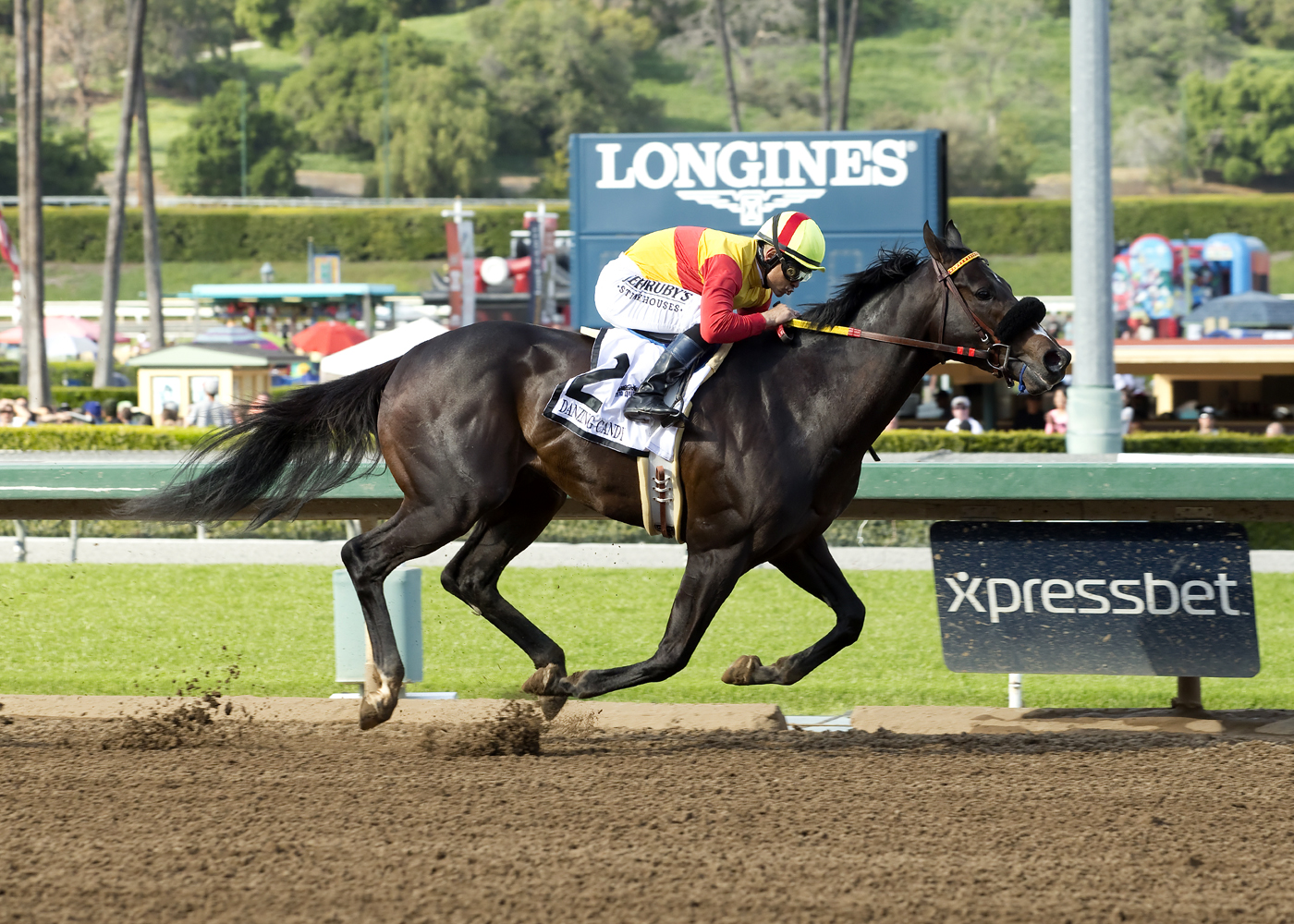 In this photo provided by Benoit Photo, Danzing Candy and jockey Mike Smith win the Grade II, $400,000 San Felipe Stakes horse race Saturday, March 12, 2016, at Santa Anita Park, Arcadia, Calif. (Benoit Photo via AP) MANDATORY CREDIT