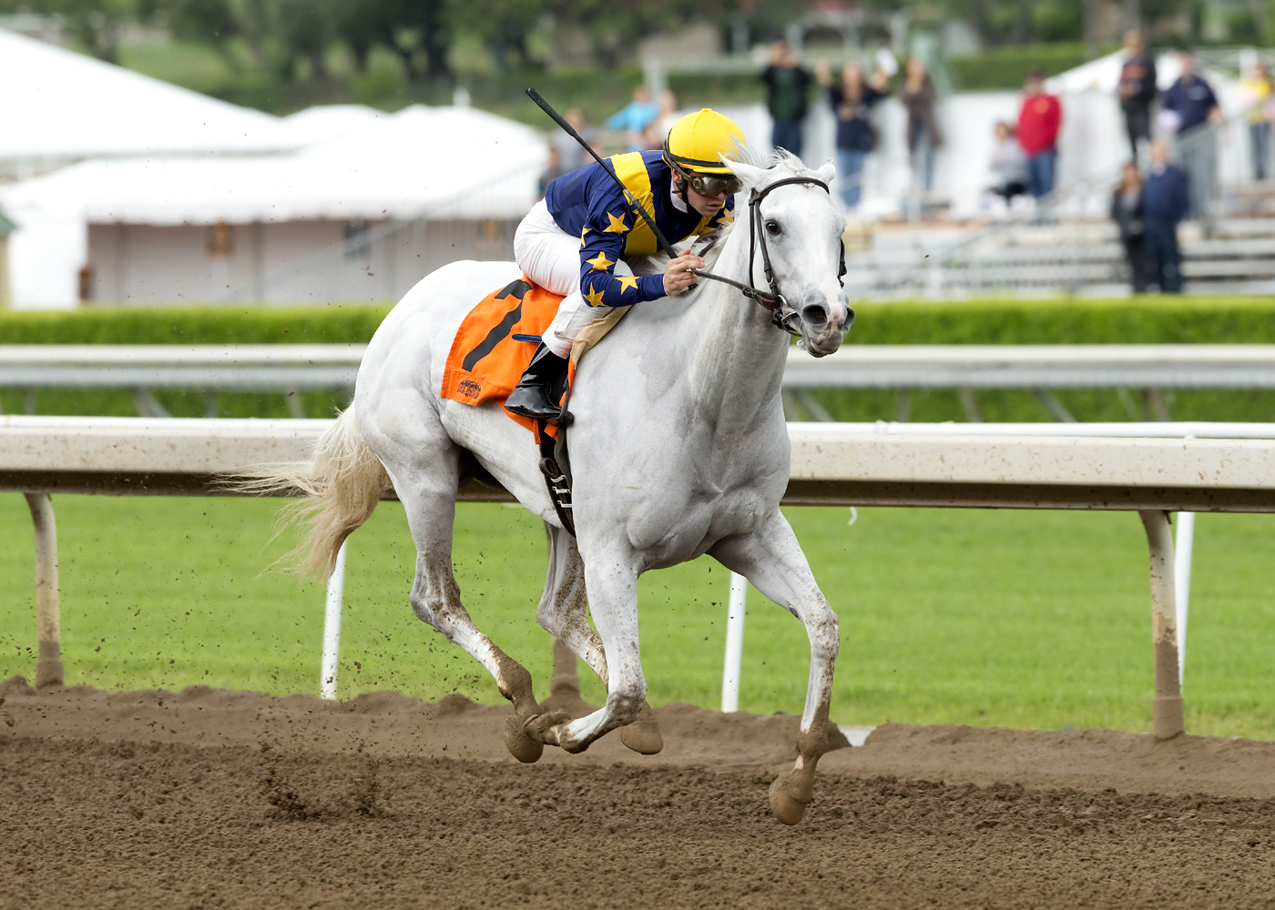 In this image provided by Benoit Photo, LNJ Foxwoods' Dreamologist and jockey Flavien Prat win the Grade III, $100,000 Las Cienegas Stakes, Sunday, April 10, 2016 at Santa Anita Park, Arcadia, Calif. (Benoit Photo via AP)