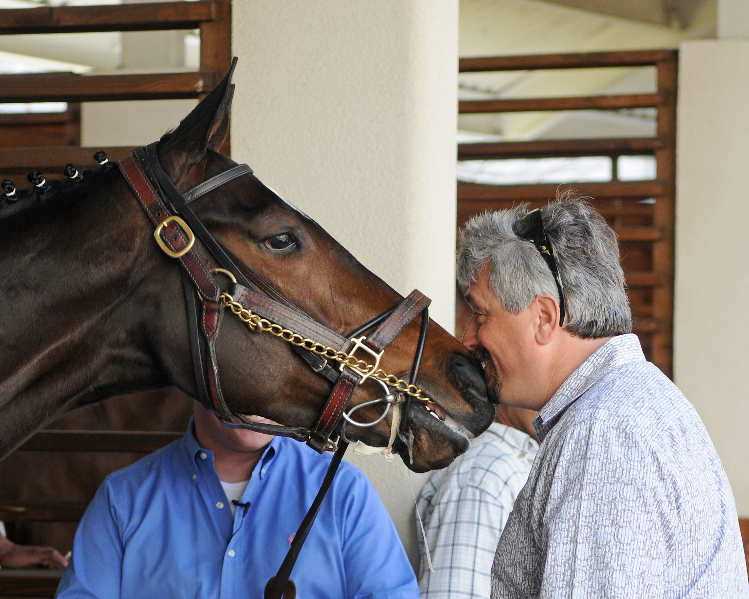 FILE - In this March 12, 2010, file photo trainer Steve Asmussen nuzzles Horse of the Year, Rachel Alexandra in the paddock of the Fair Grounds Race Course in New Orleans. Champion racehorses Rachel Alexandra and Zenyatta, jockey Ramon Dominguez and train