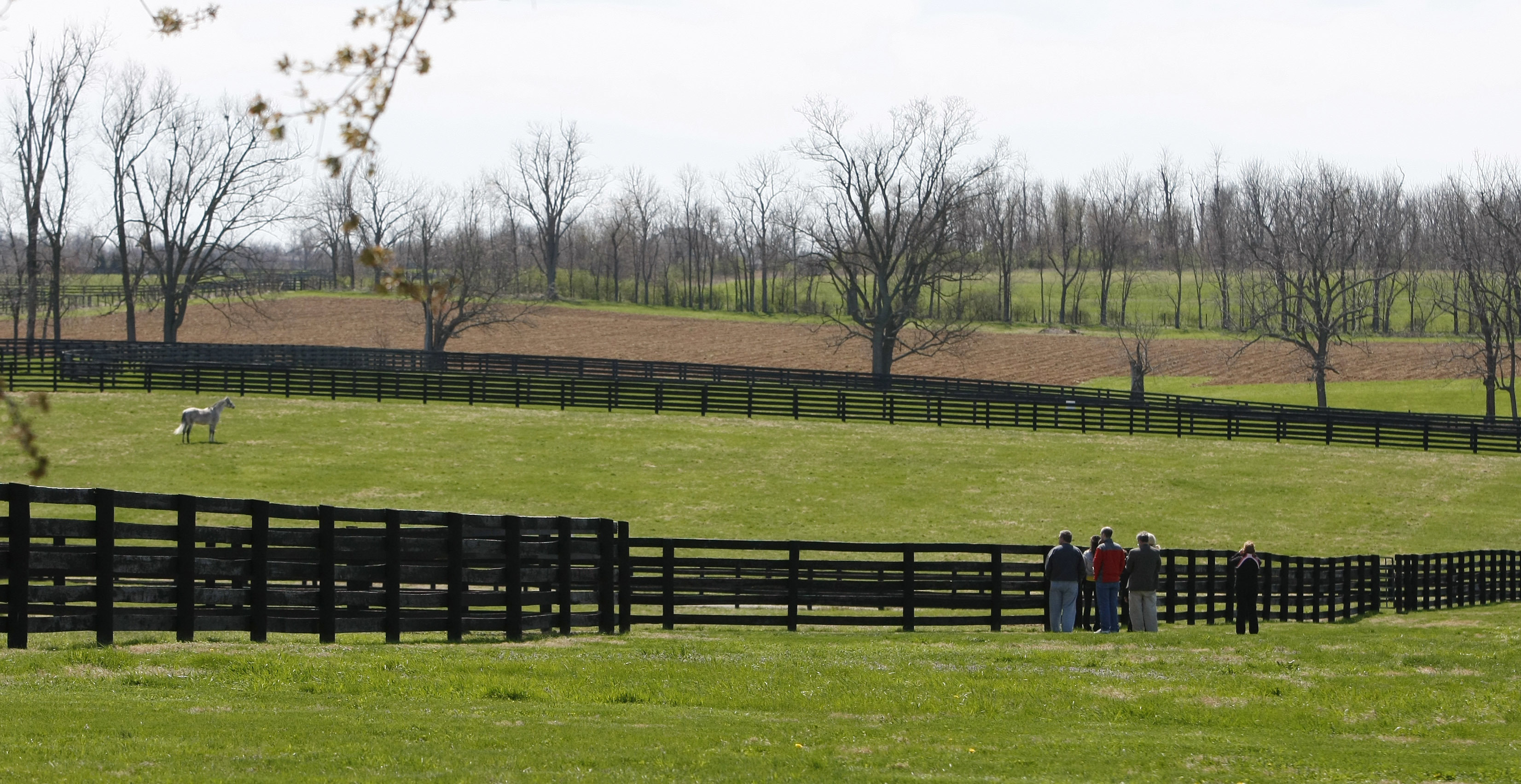 FILE - In this April 6, 2011 file photo, a tour group stands along a fence to view Exchange Rate in a paddock at Three Chimneys Farm in Midway, Ky. Some of the best-known farms in Kentuckys scenic horse country are borrowing from another of the states con
