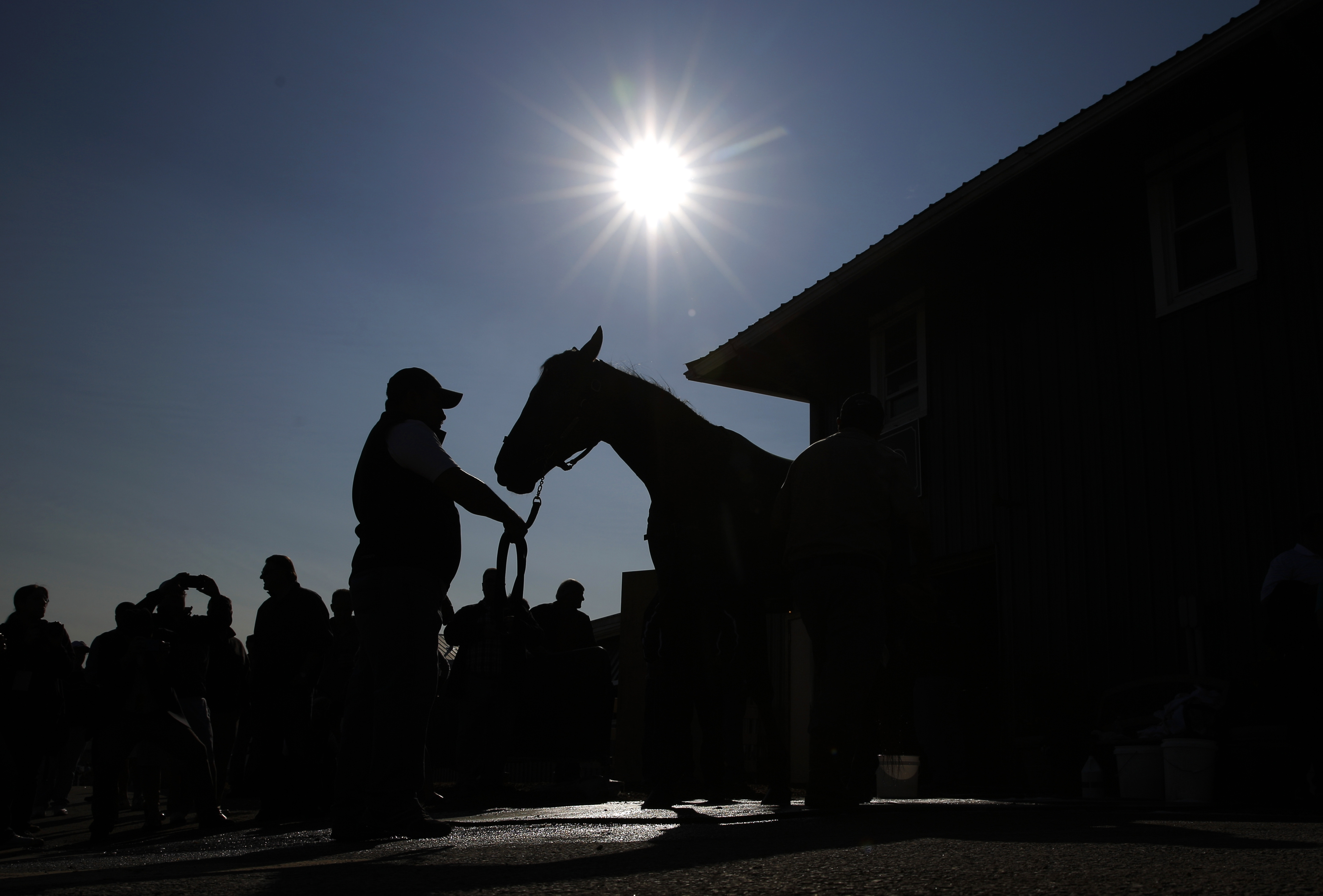 Kentucky Derby winner Nyquist is washed at Pimlico Race Course in Baltimore, Friday, May 20, 2016. The Preakness Stakes horse race is scheduled to take place May 21. (AP Photo/Patrick Semansky)