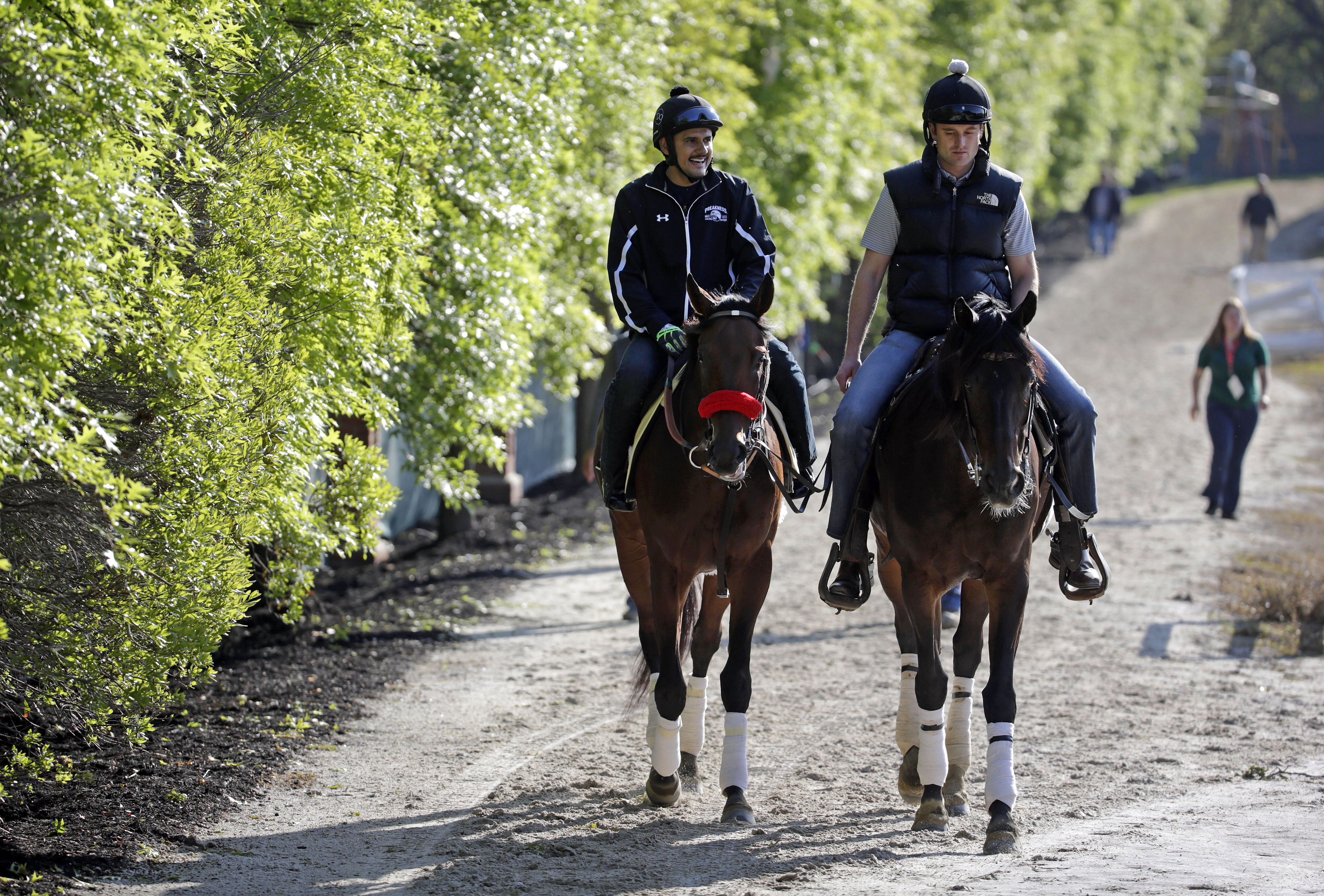 Kentucky Derby winner Nyquist, left, ridden by exercise rider Jonny Garcia, walks to the barns alongside an outrider at Pimlico Race Course in Baltimore, Friday, May 20, 2016. The Preakness Stakes horse race is scheduled to take place May 21. (AP Photo/Pa