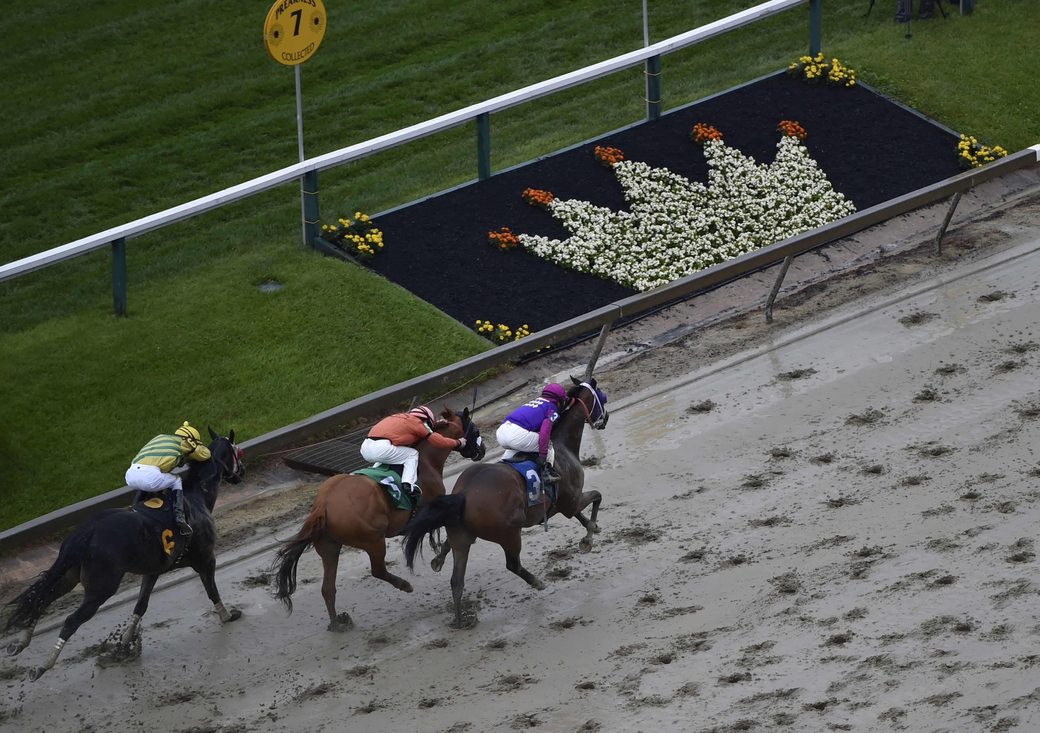 Homeboykris (3), ridden by Horacio Karamanos, head to the finish to win the first race of the day on a muddy track ahead of the 141st Preakness Stakes horse race at Pimlico Race Course, Saturday, May 21, 2016, in Baltimore. (AP Photo/Mike Stewart)