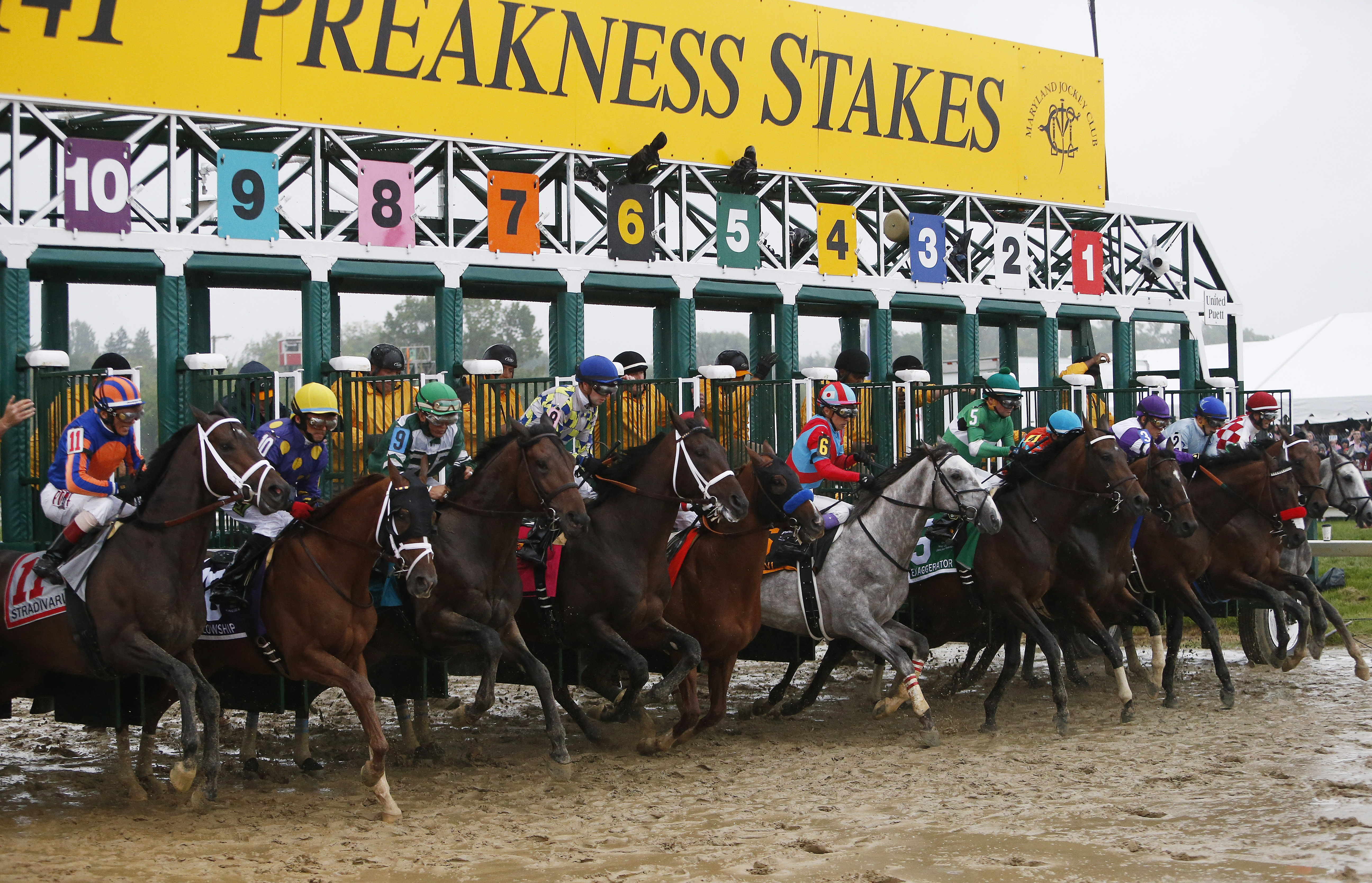 Horses leave the starting gate during the 141st Preakness Stakes horse race at Pimlico Race Course, Saturday, May 21, 2016, in Baltimore. Exaggerator won the race. (AP Photo/Garry Jones)