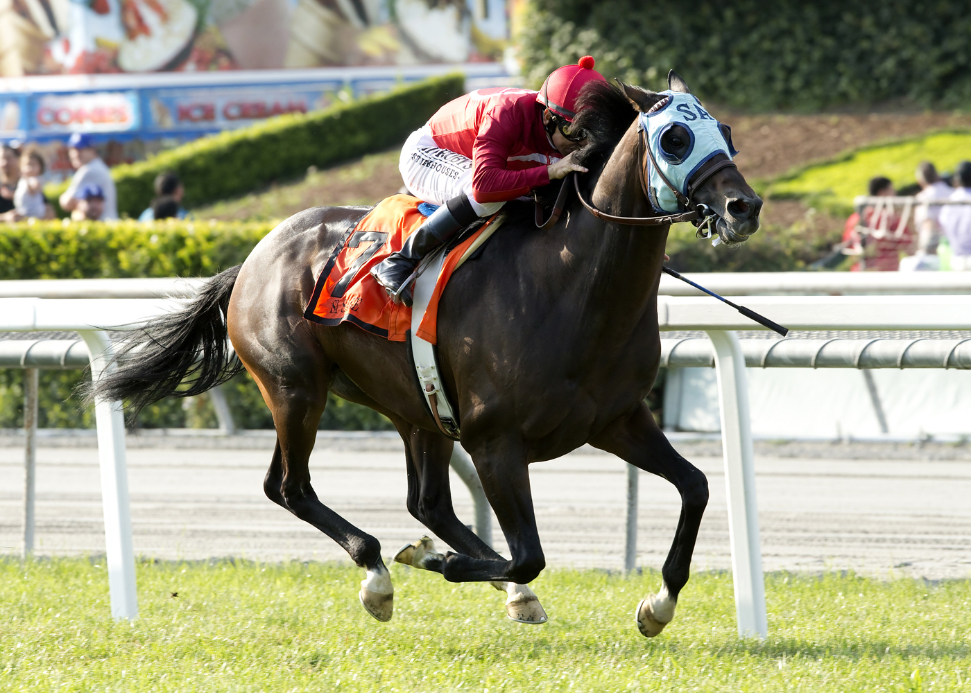 In a photo provided by Benoit Photo, Si Sage and jockey Mike Smith win the Grade II, $200,000 Charles Whittingham Stakes horse race, Sunday, May 29, 2016, at Santa Anita in Arcadia, Calif. (Benoit Photo via AP)