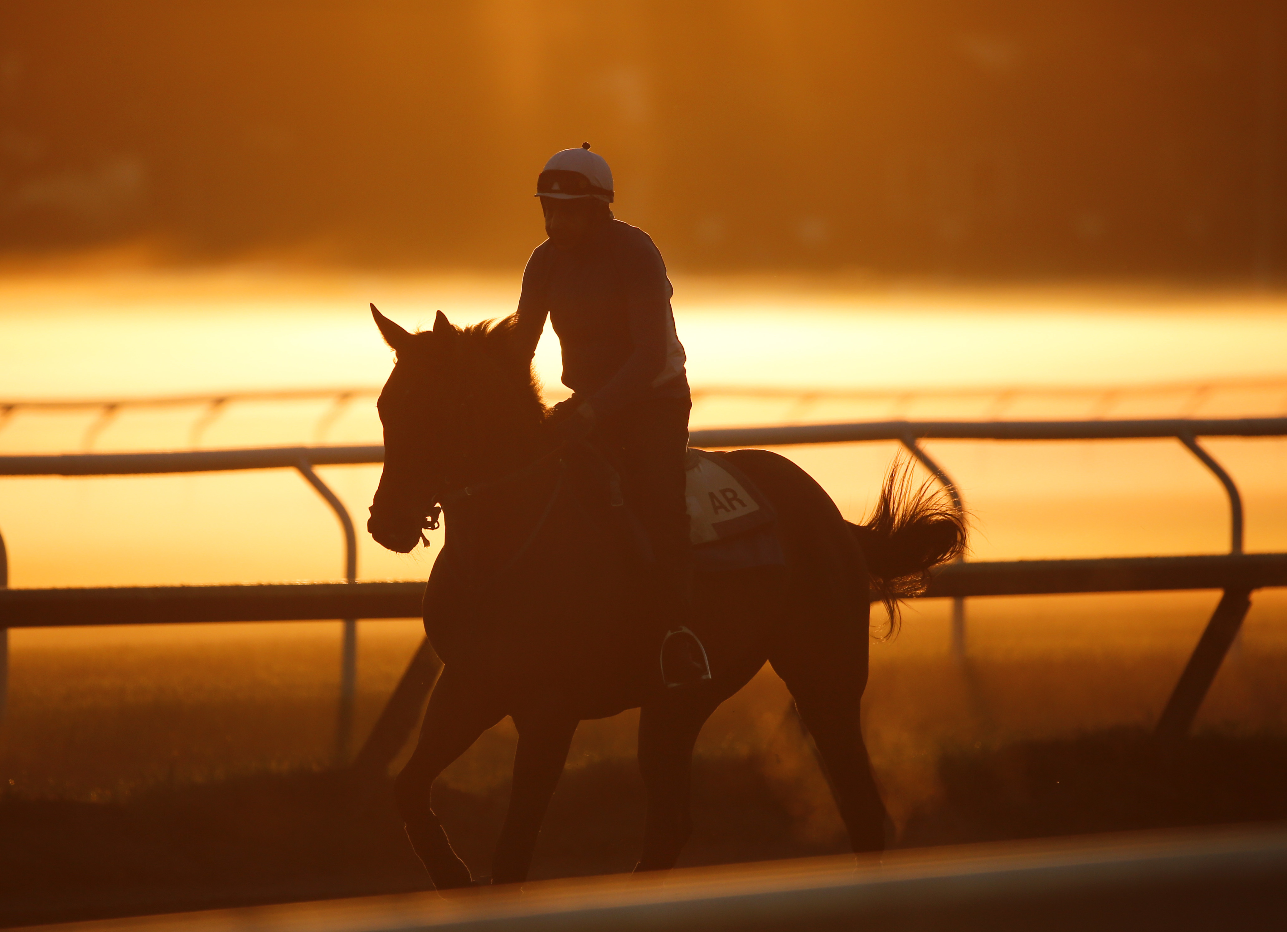 An exercise rider rides a horse during morning workouts at the Oklahoma Training Track on Thursday, July 21, 2016, in Saratoga Springs, N.Y. The thoroughbred racing season at Saratoga Race Course opens Friday. (AP Photo/Mike Groll)