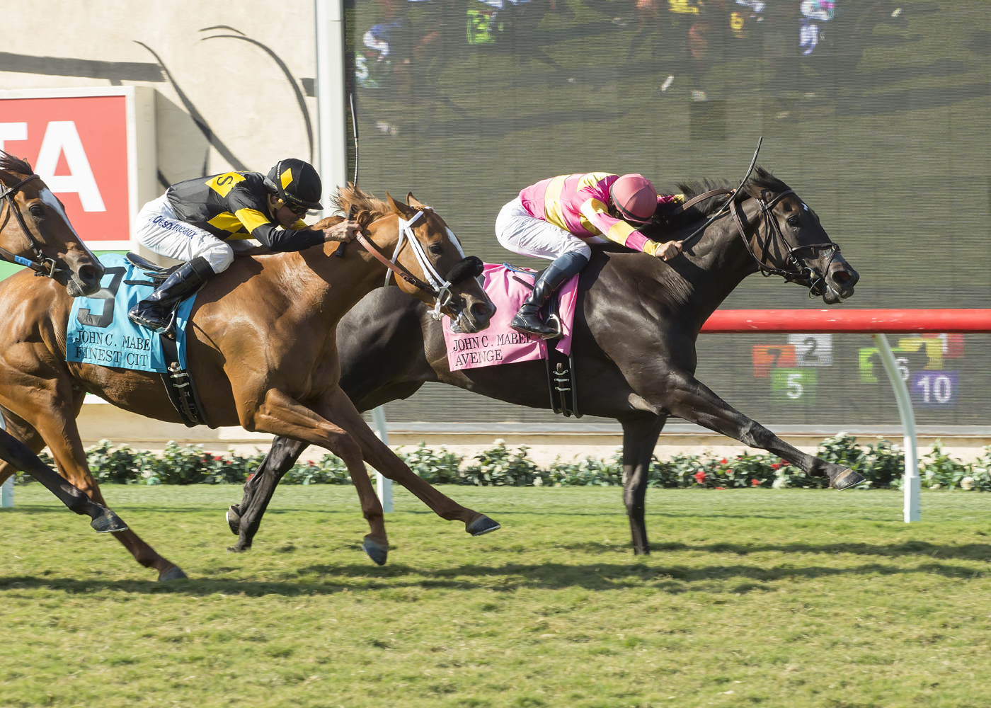 In a photo provided by Benoit Photo, Ramona Bass' Avenge and jockey Flavien Prat, right, outleg Finest City (Kent Desormeaux), left, to win the Grade II, $200,000 John C. Mabee Stakes, Sunday, Sept. 4, 2016 at Del Mar Thoroughbred Club in Del Mar, Calif.