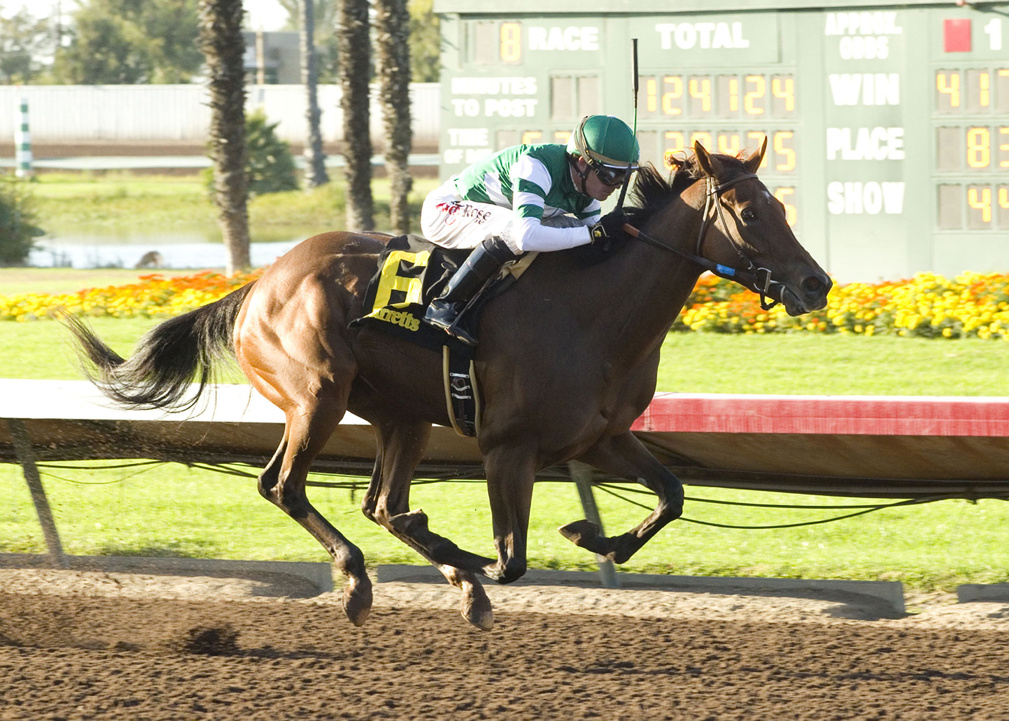 Hronis Racing and Sadler's Bitzka and jockey Tyler Baze win the $100,000 Barretts Debutante Saturday, Sept. 17, 2016 at Los Alamitos Race Course, in Cypress, Calif. (Benoit Photo via AP)
