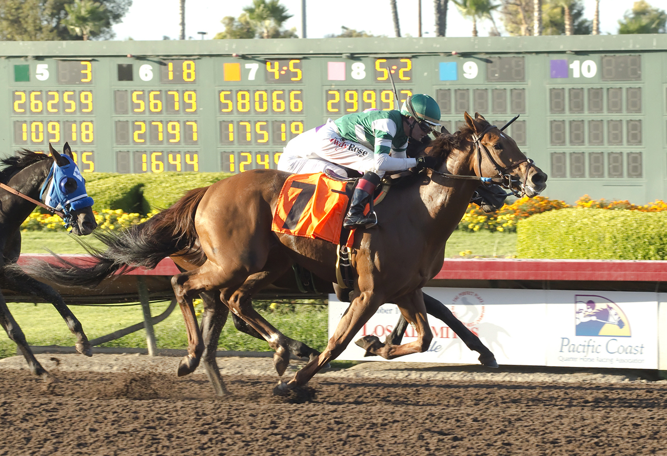 In a photo provided by Benoit Photo, Accelerate and jockey Tyler Baze, outside, overpower Semper Fortis, inside, with Santiago Gonzalez, to win the Grade II, $200,000 Los Alamitos Derby horse race, Saturday, Sept. 24, 2016, at Los Alamitos Race Course in