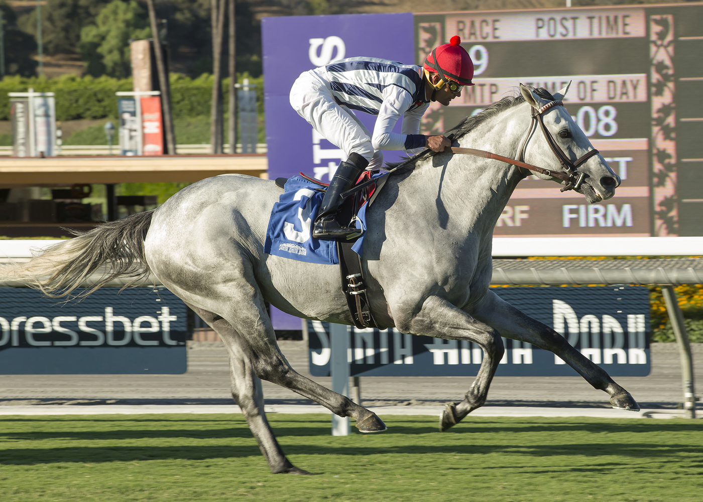 In a photo provided by Benoit Photo, Holy Lute and jockey Jamie Theriot win the second division of the Grade III, $100,000 Eddie D Stakes horse race Friday, Sept. 30, 2016, at Santa Anita in Arcadia, Calif. (Benoit Photo via AP)
