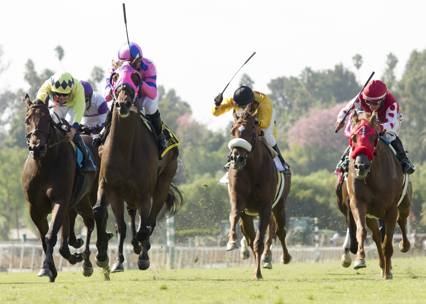 Ashleyluvssugar and jockey Gary Stevens, second from lef, compete in the Grade II, $200,000 John Henry Turf Championship at Santa Anita Park in Arcadia, Calif., Sunday, Oct. 2, 2016. They won the race. (Benoit Photo via AP)