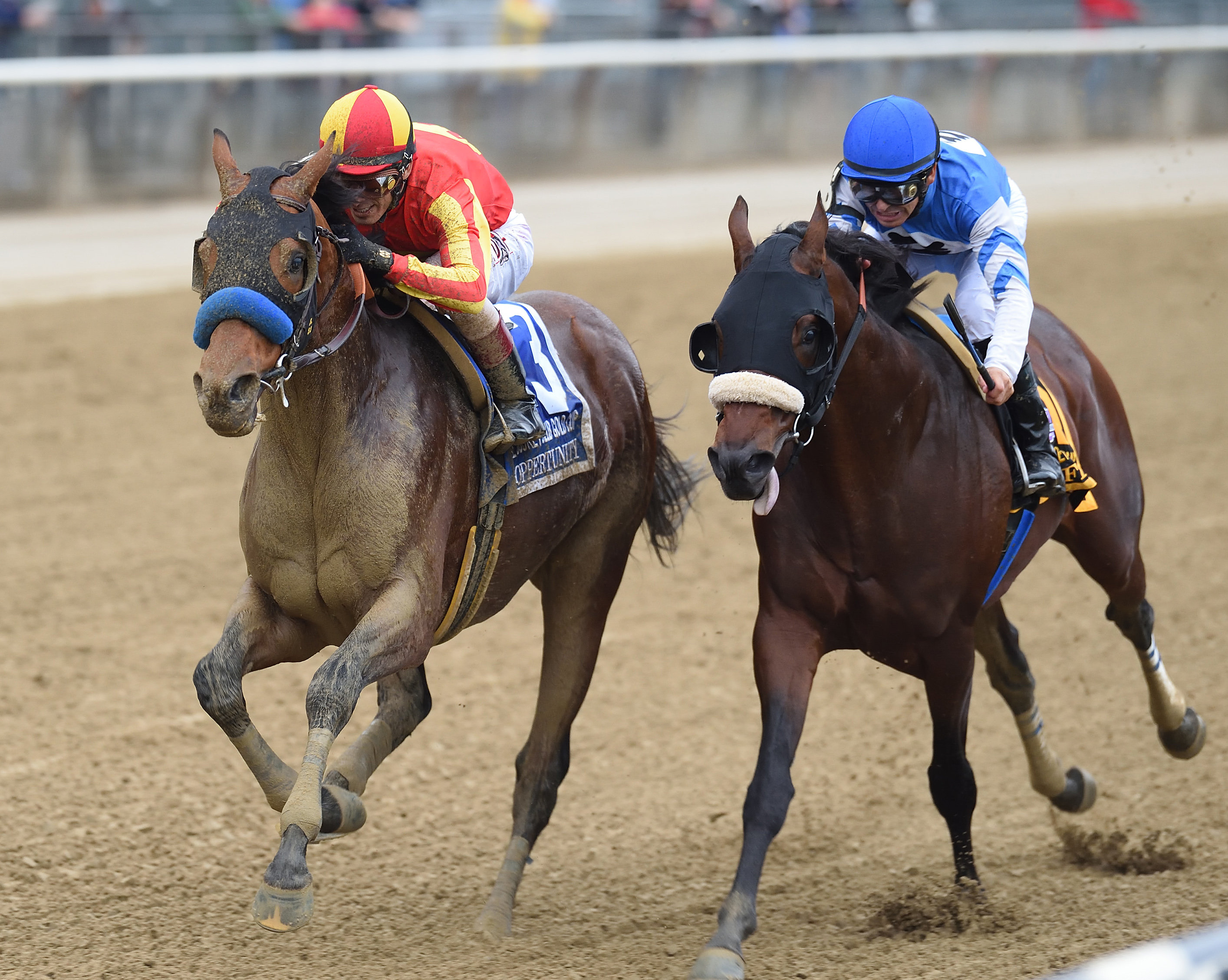 In this image provided by the New York Racing Association, Hoppertunity, left, ridden by John R. Velazquez, wins the Jockey Club Gold Cup horse race Saturday, Oct. 8,2 016, at Belmont Park in Elmont, N.Y. (Chelsea Durand/NYRA via AP)