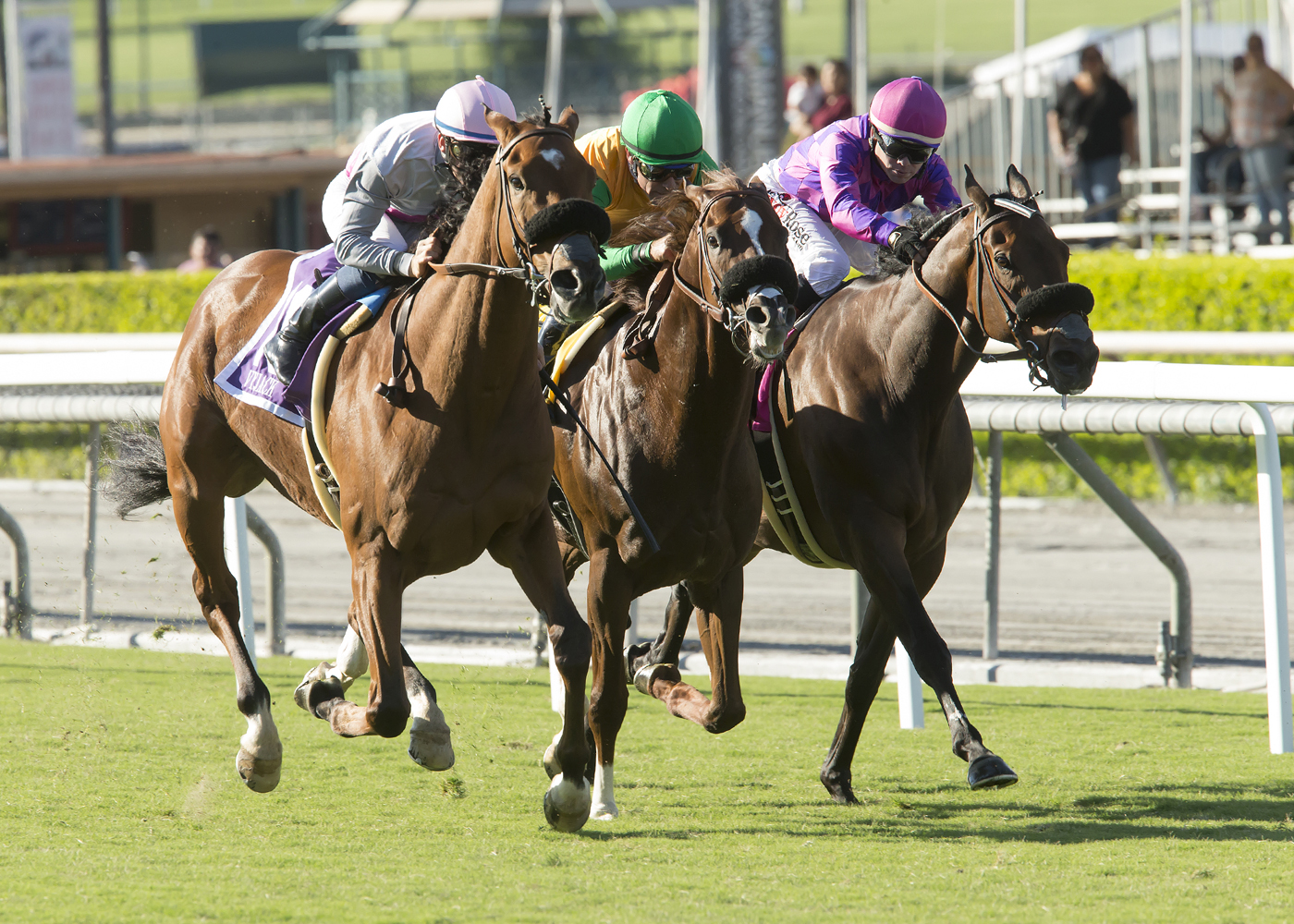 In a photo provided by Benoit Photo, Vyjack and jockey Flavien Prat, left, overpower Om, with Gary Stevens, middle, and Obviously, with Tyler Baze, to win the Grade II, $200,000 City of Hope Mile horse race Saturday, Oct. 8, 2016, at Santa Anita in Arcadi