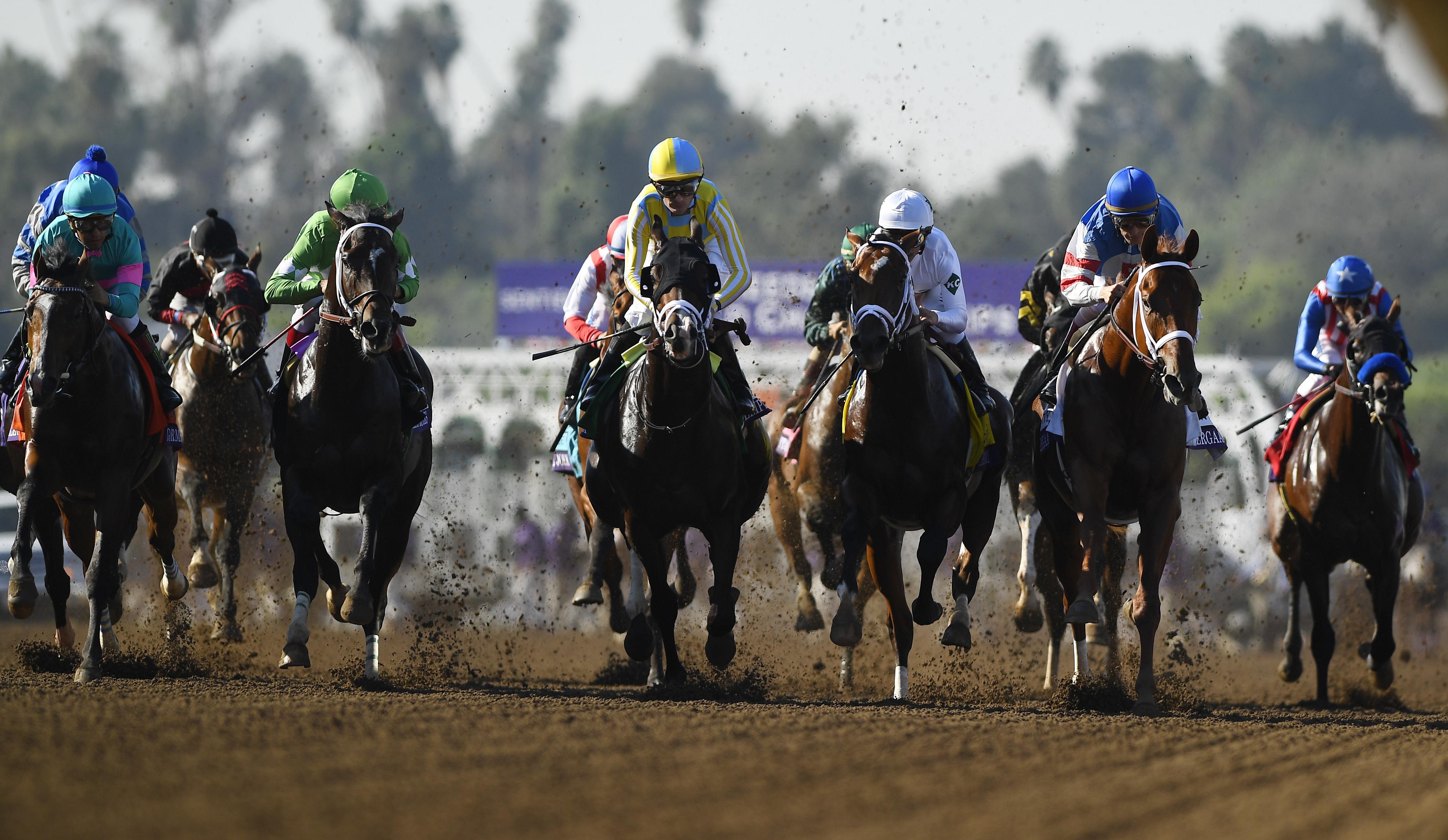 Julien Velasquez, center, rides Classic Empire to victory in the Breeders' Cup Juvenile horse race at Santa Anita, Saturday, Nov. 5, 2016, in Arcadia, Calif. (AP Photo/Mark J. Terrill)
