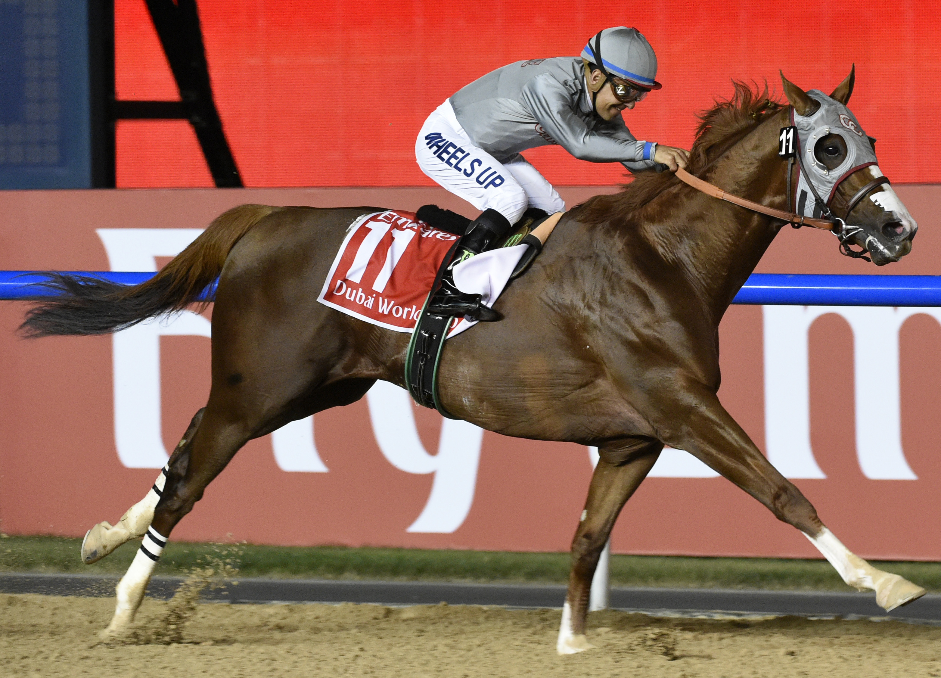 FILE - In this Saturday, March 26, 2016, file photo, California Chrome, ridden by Victor Espinoza, wins the Dubai World Cup horse race at Meydan Racecourse in Dubai, United Arab Emirates. California Chrome was the biggest winner at the Eclipse Awards on S