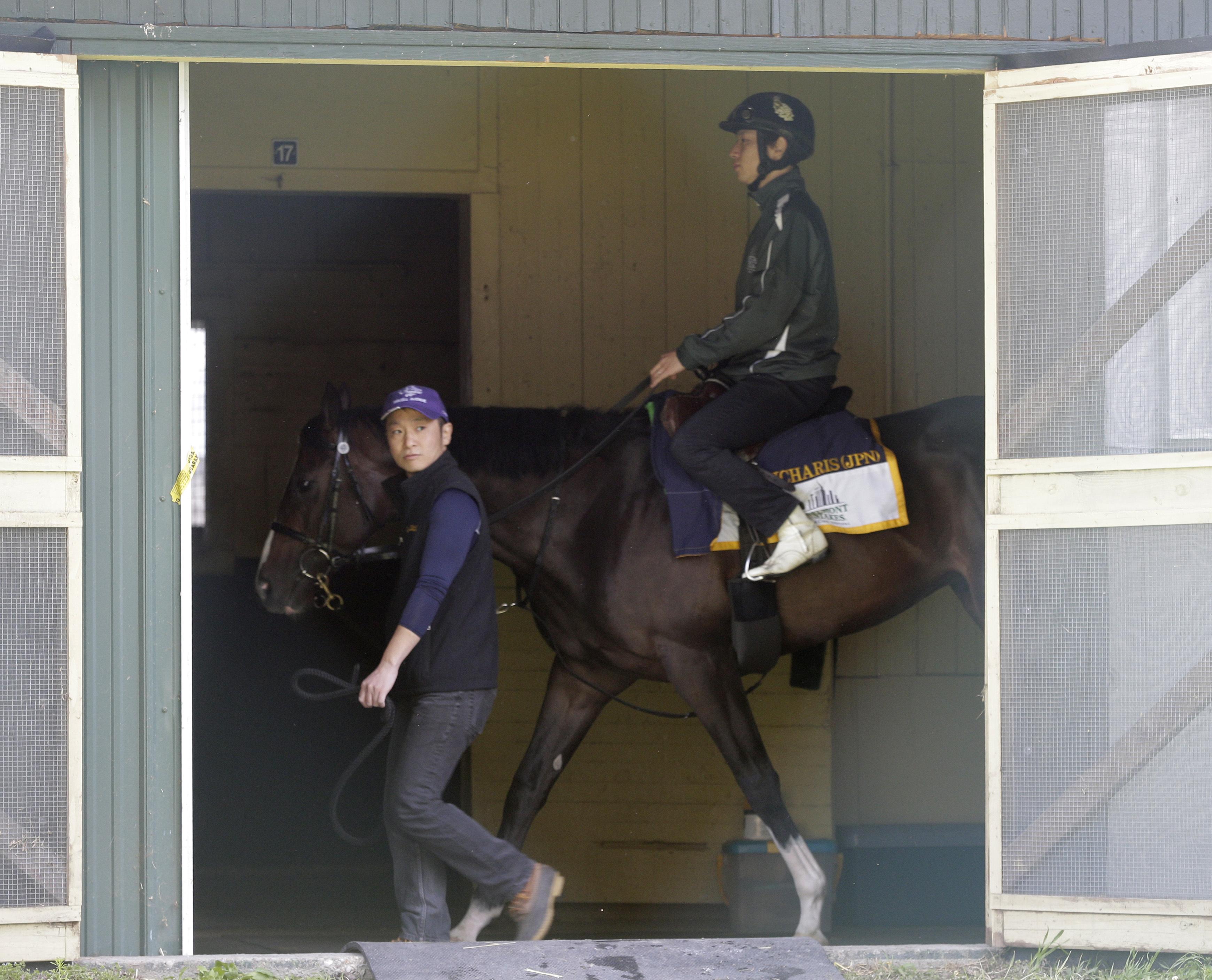 Belmont Stakes hopeful Epicharis walks in his barn at Belmont Park, Friday, June 9, 2017, in Elmont, N.Y. Epicharis, is expected to run in 149th Belmont Stakes horse race on Saturday. (AP Photo Peter Morgan)