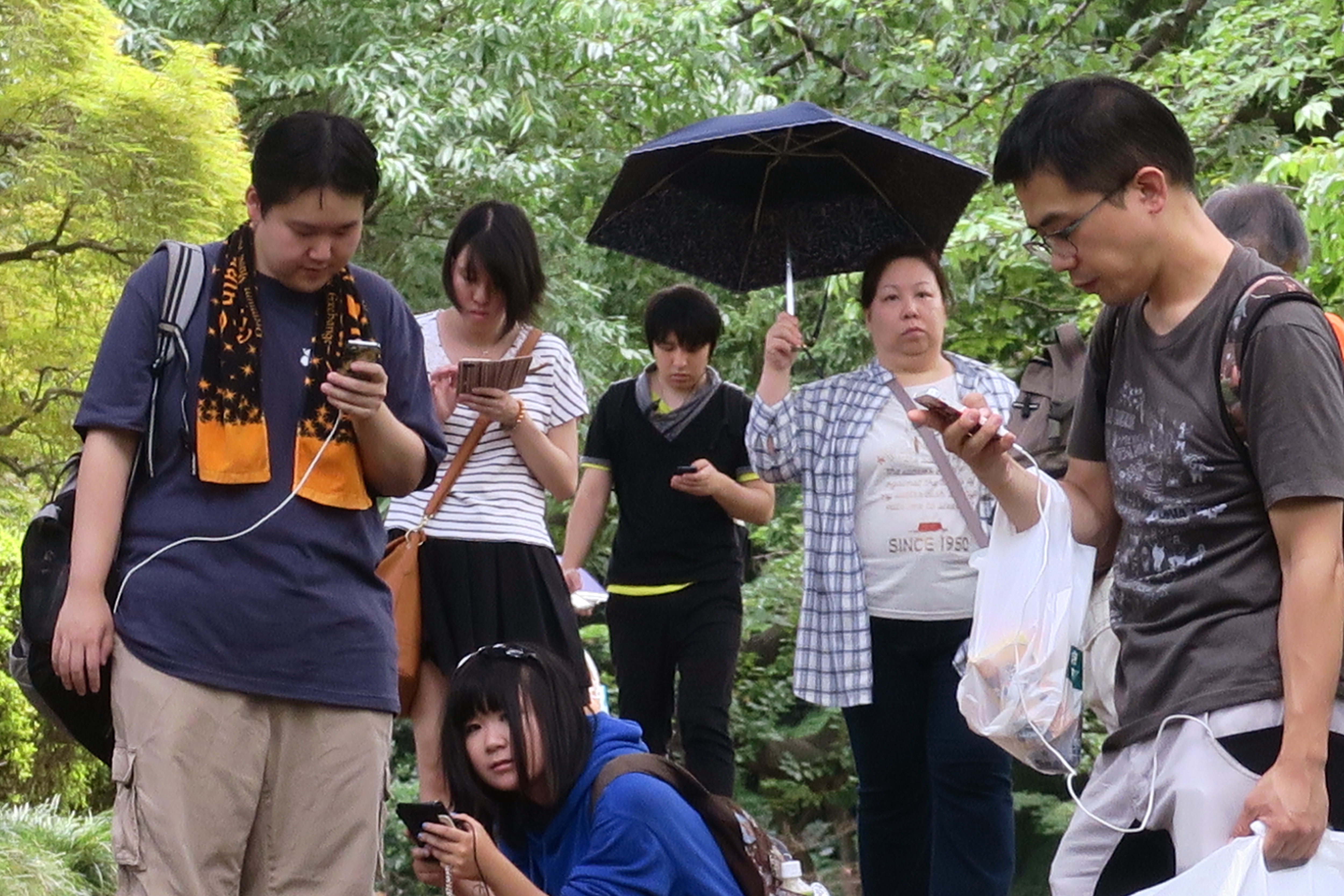 """In this Thursday, June 28, 2016 photo, Pokemon hunters crowd under a green canopy with their mobile phones as they play """"Pokemon Go"""" in the Shinjuku Gyoen National Garden in Tokyo. Japanese Olympic gymnast Kohei Uchimura was stunned to receive a 500,000 y"""