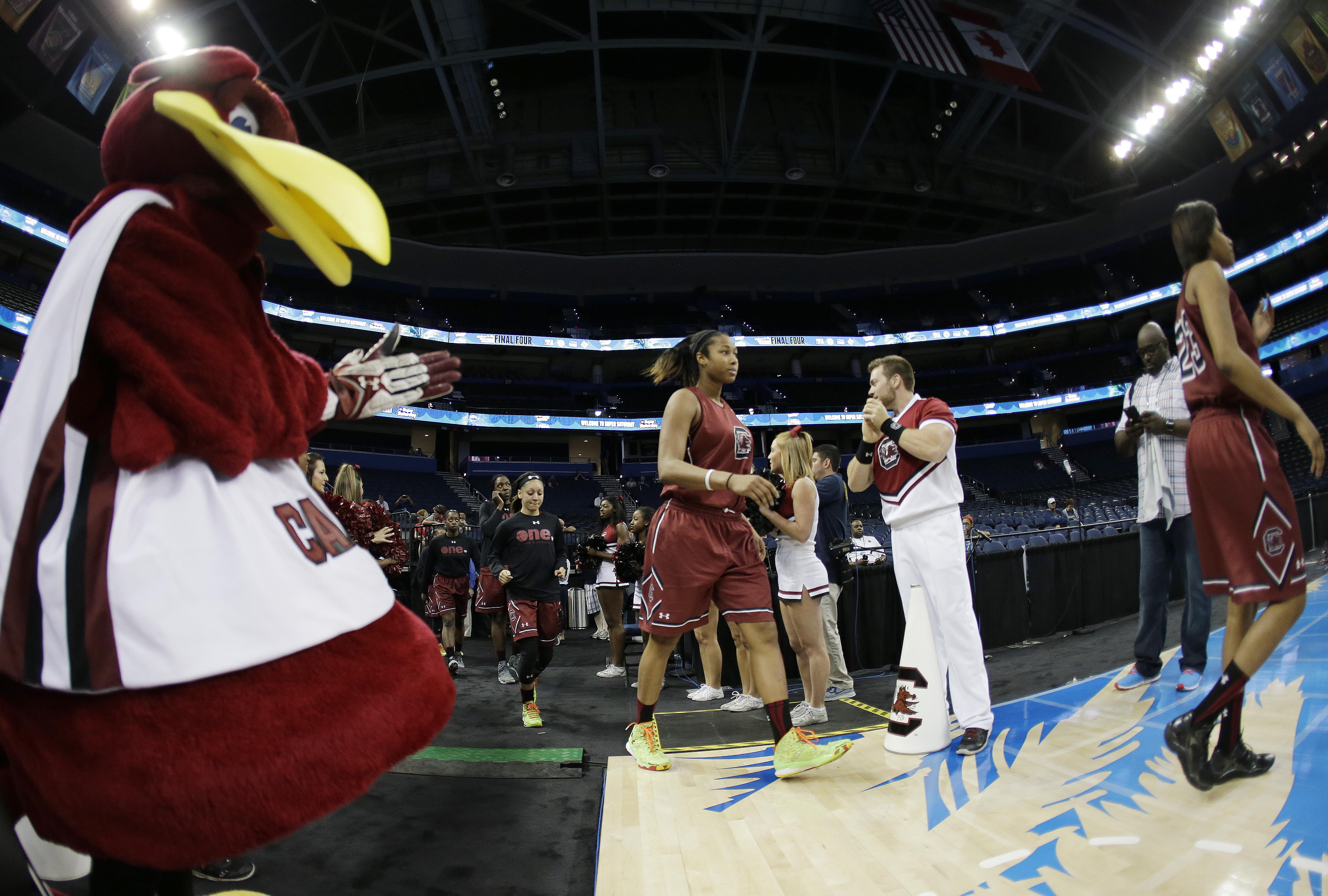 South Carolina players take the floor before a practice session for the NCAA Final Four tournament women's college basketball semifinal game, Saturday, April 4, 2015, in Tampa, Fla. South Carolina plays Notre Dame Saturday in a semifinal game. (AP Photo/C