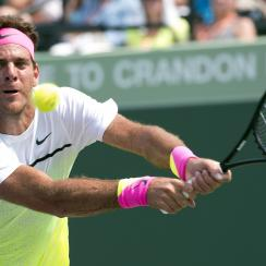 juan-martin-del-potro-return-ap-tour